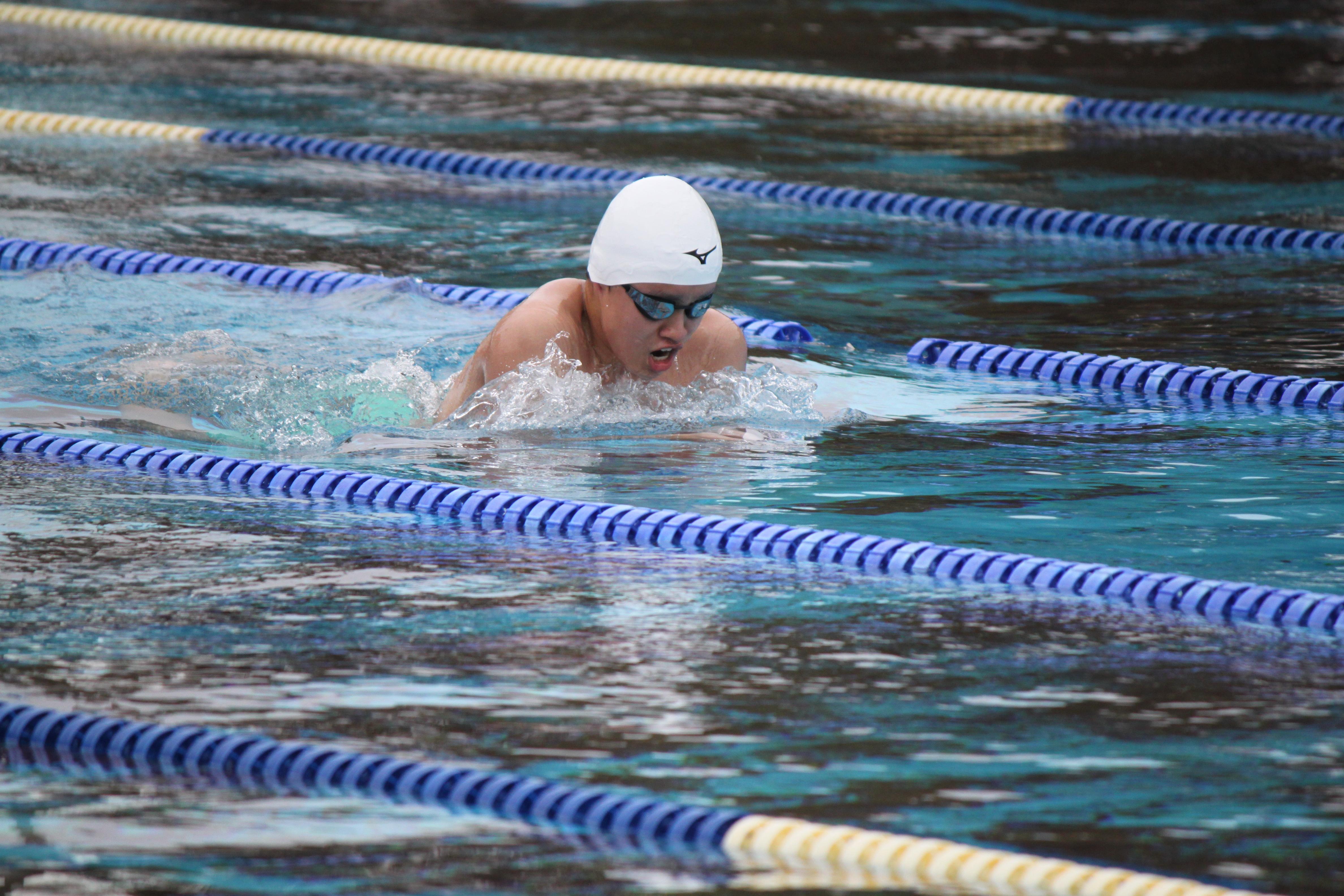 水泳競技 (34)