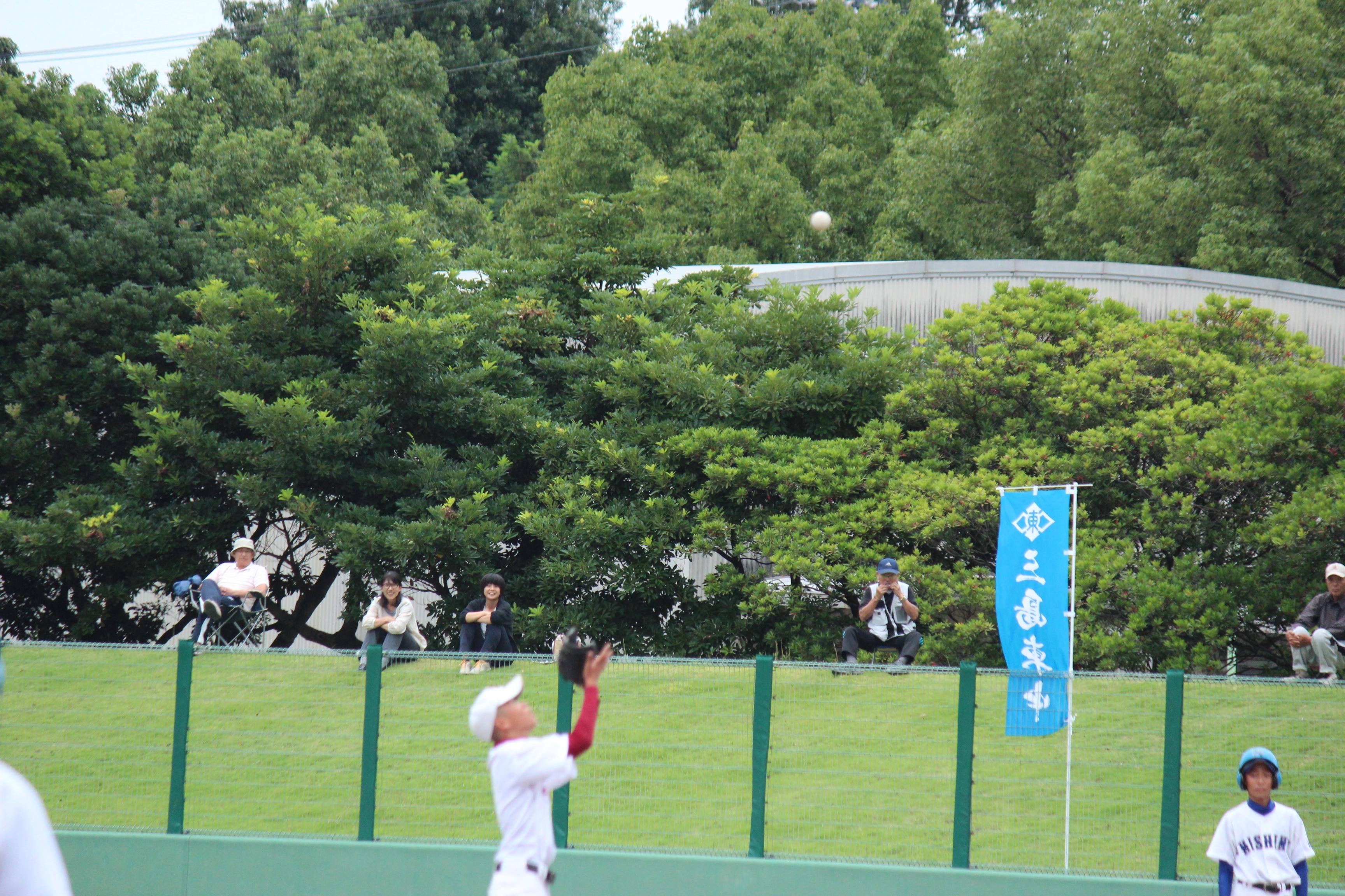 野球 (236)