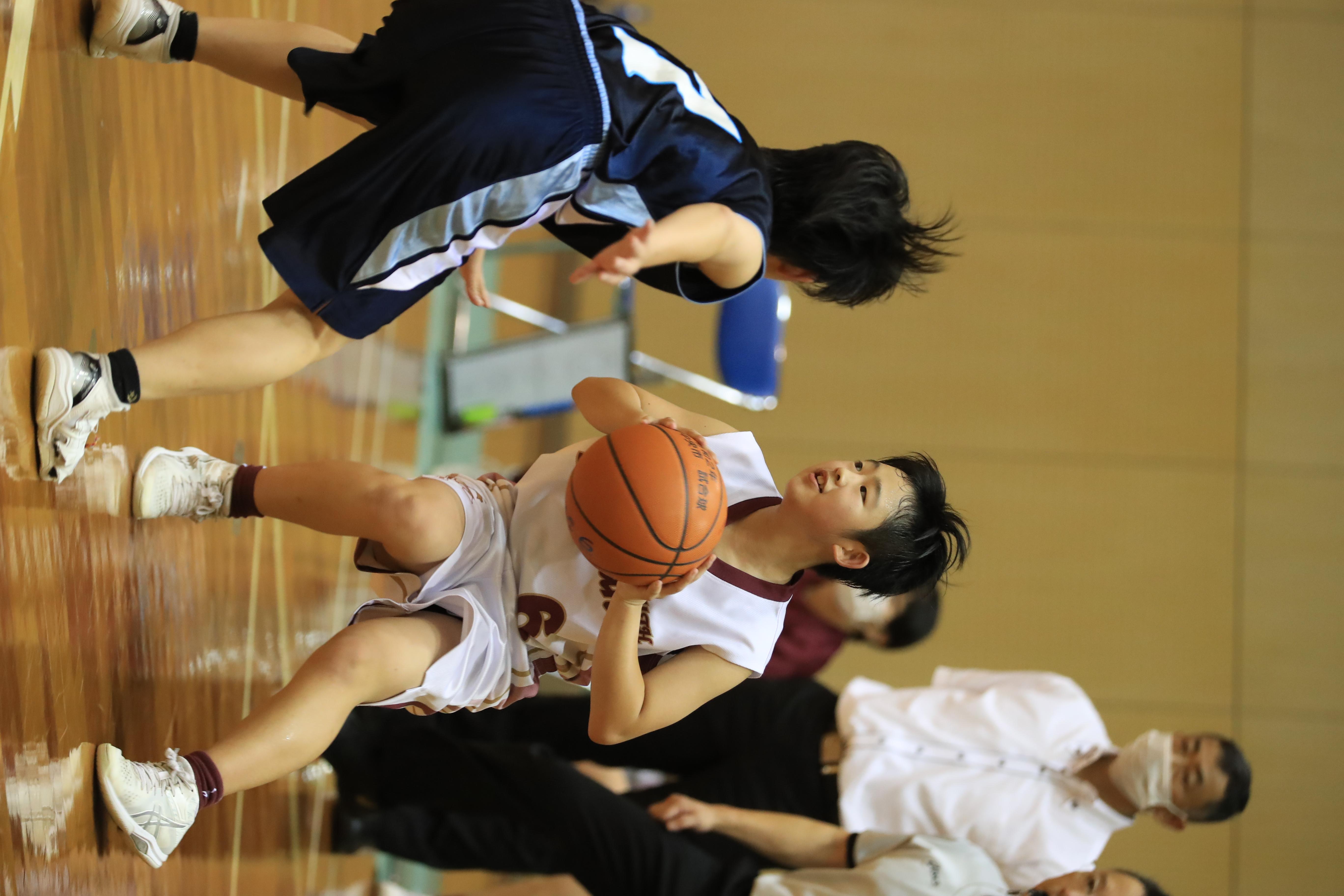 バスケット (470)