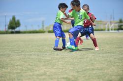 mini_soccer (413)