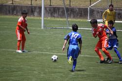 サッカー (803)