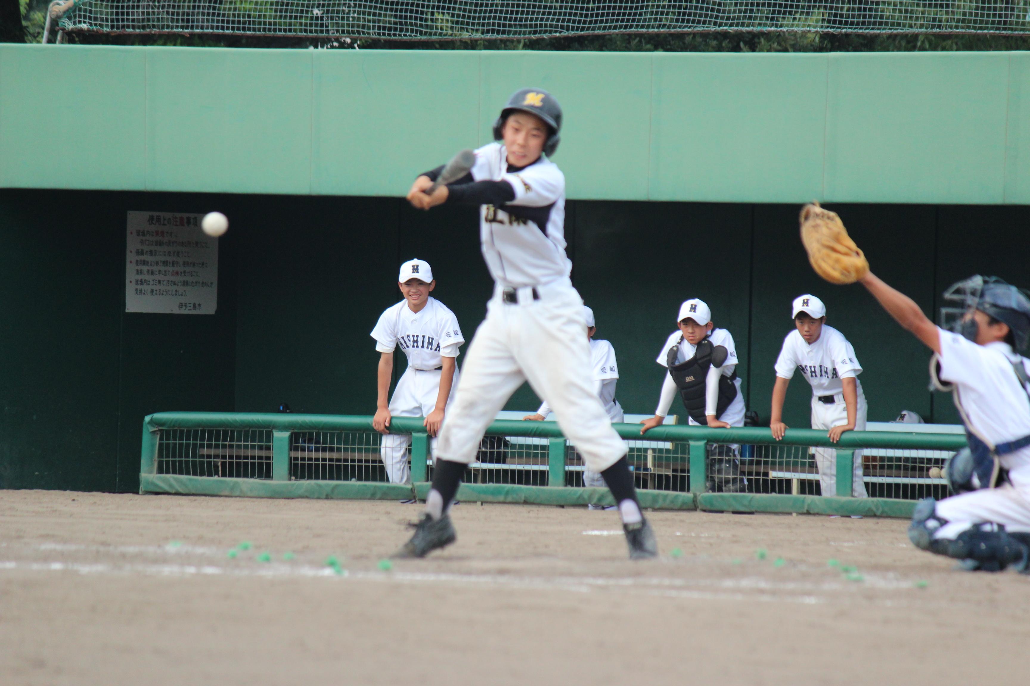 野球 (484)