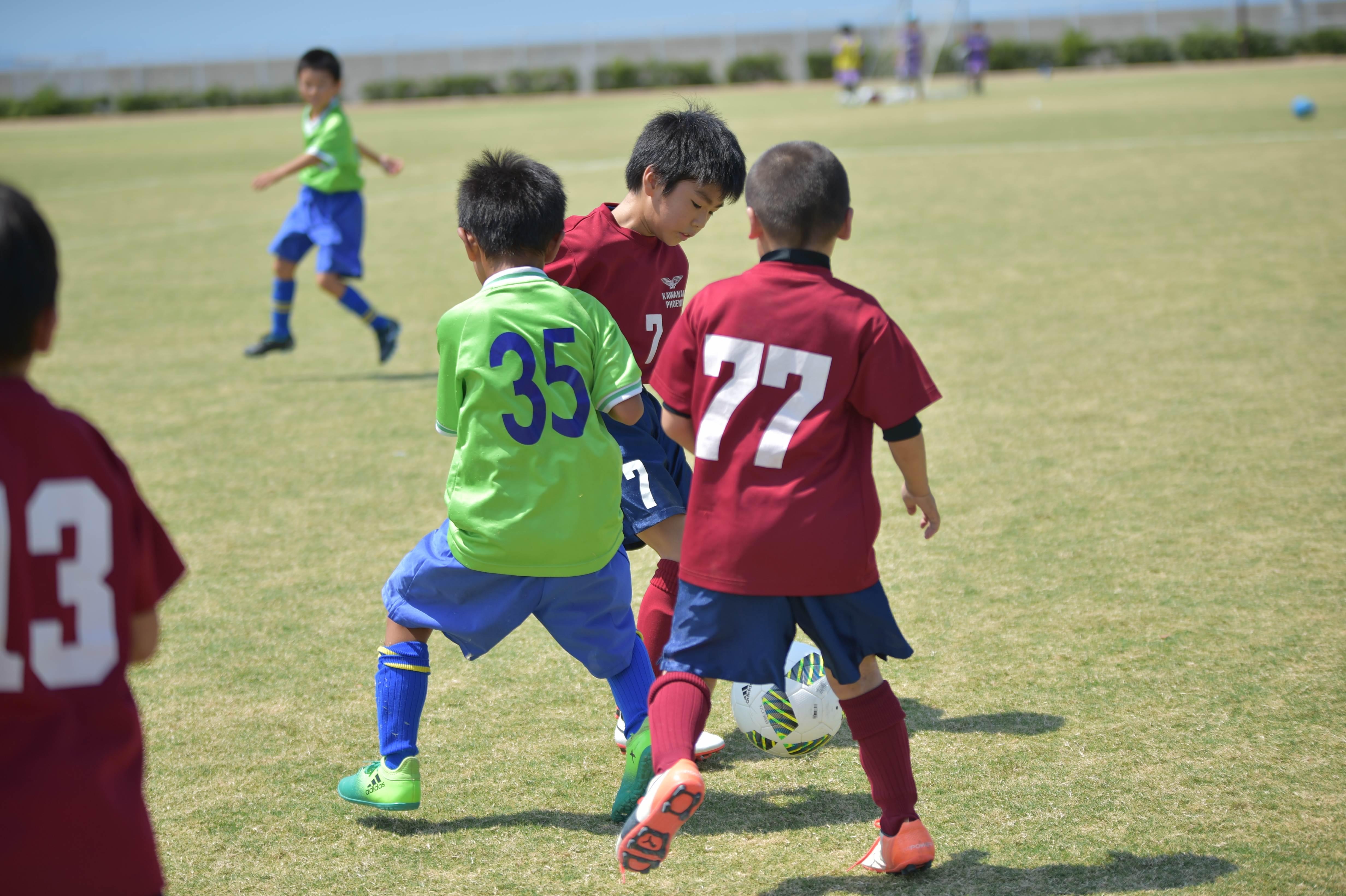 mini_soccer (451)