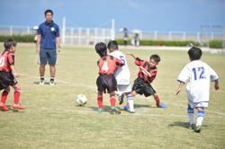 mini_soccer (304)