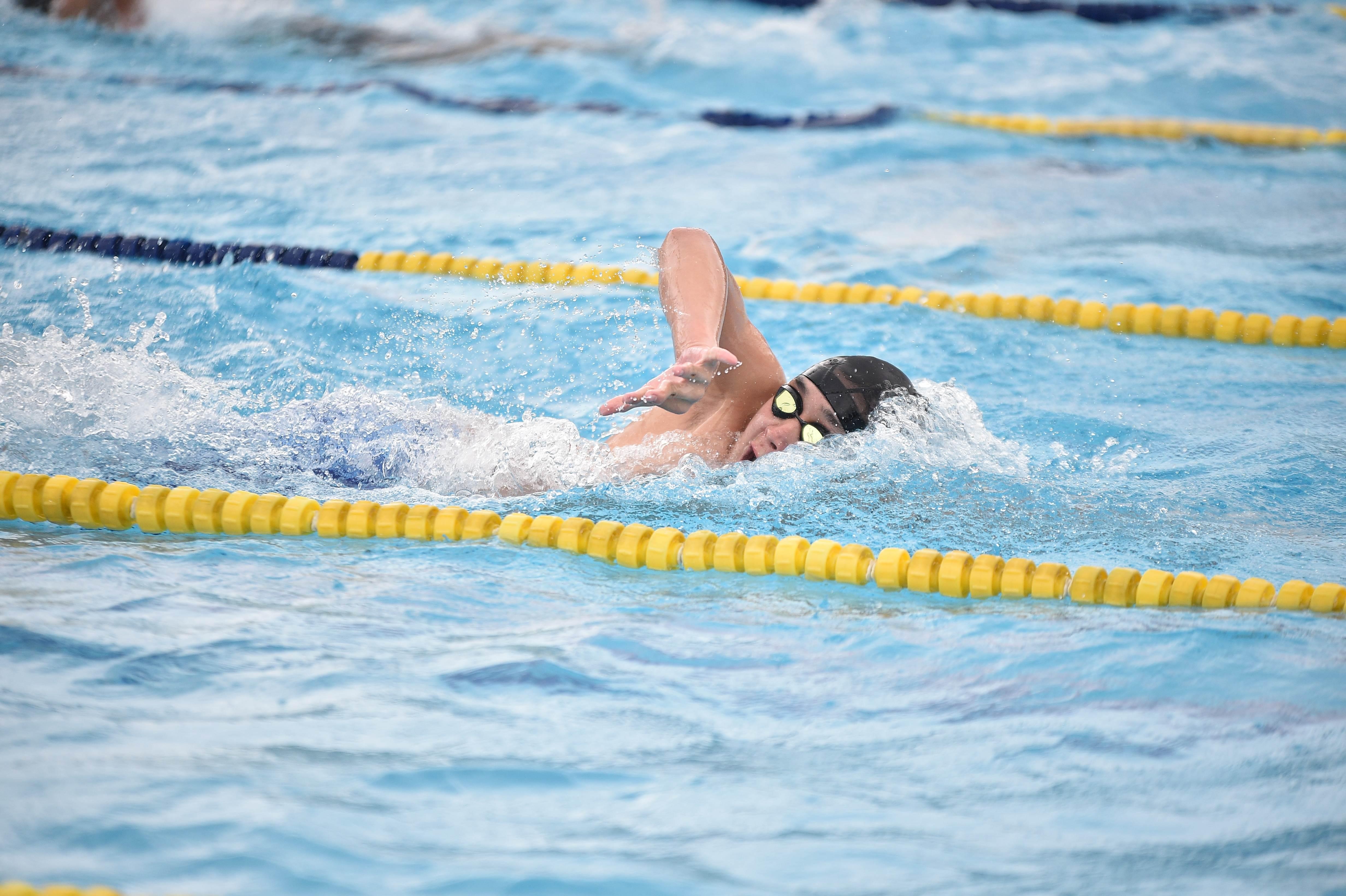 水泳 (104)