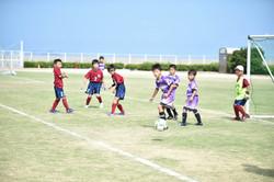 mini_soccer (228)