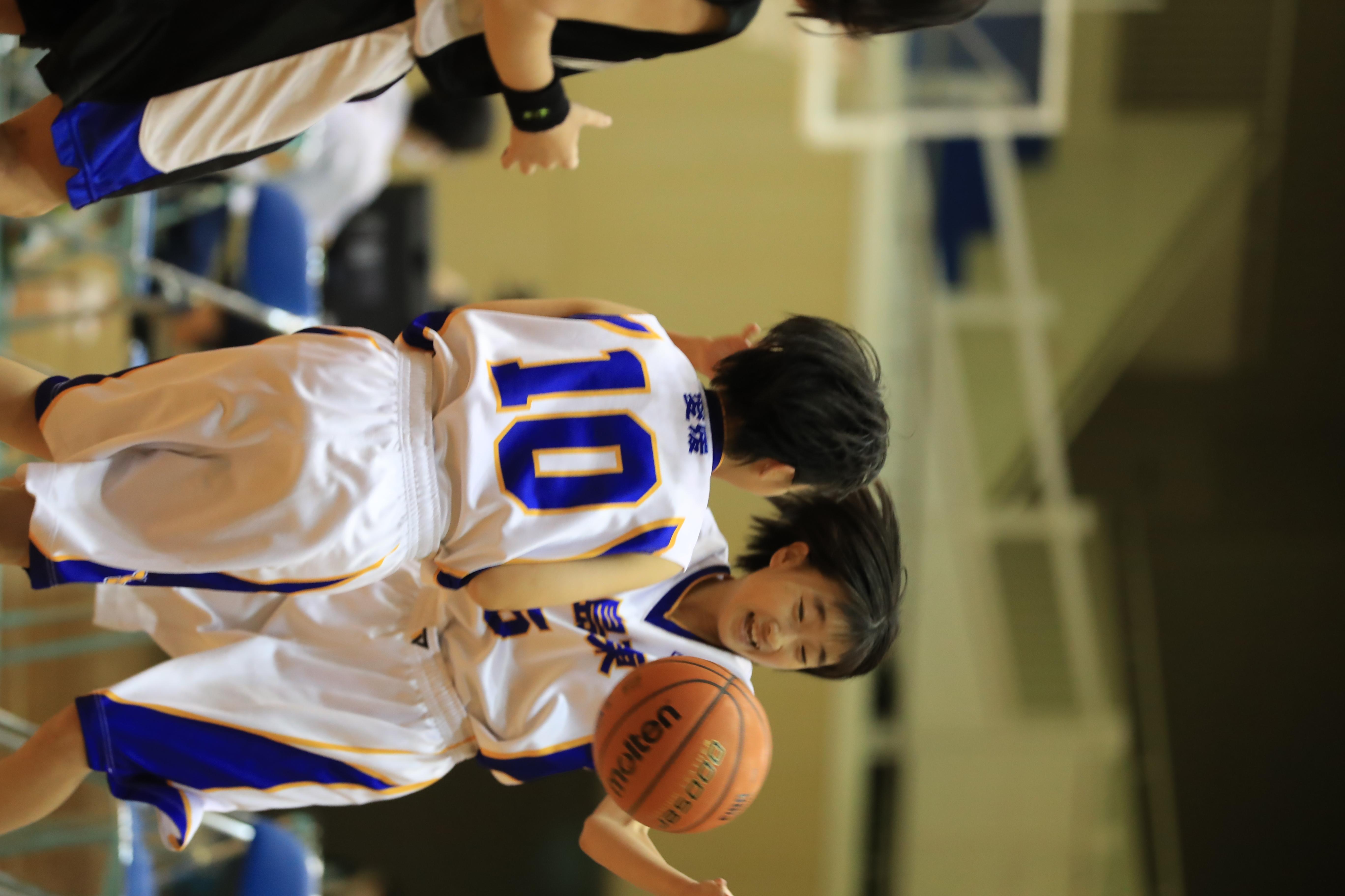 バスケット (821)