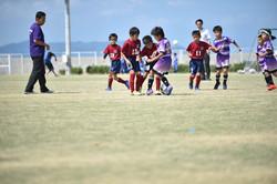 mini_soccer (297)