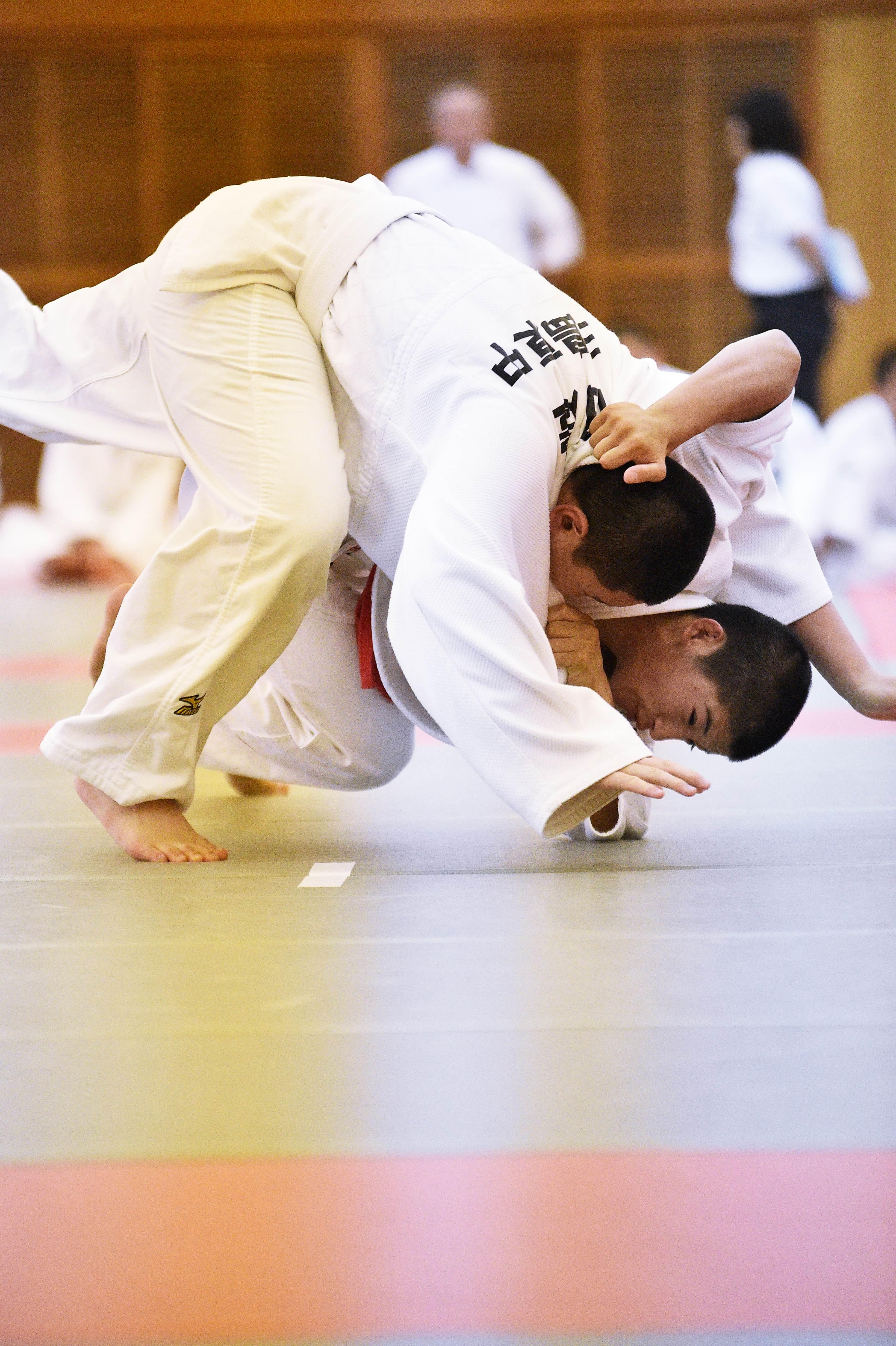 Judo (20)