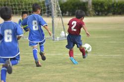 mini_soccer (569)