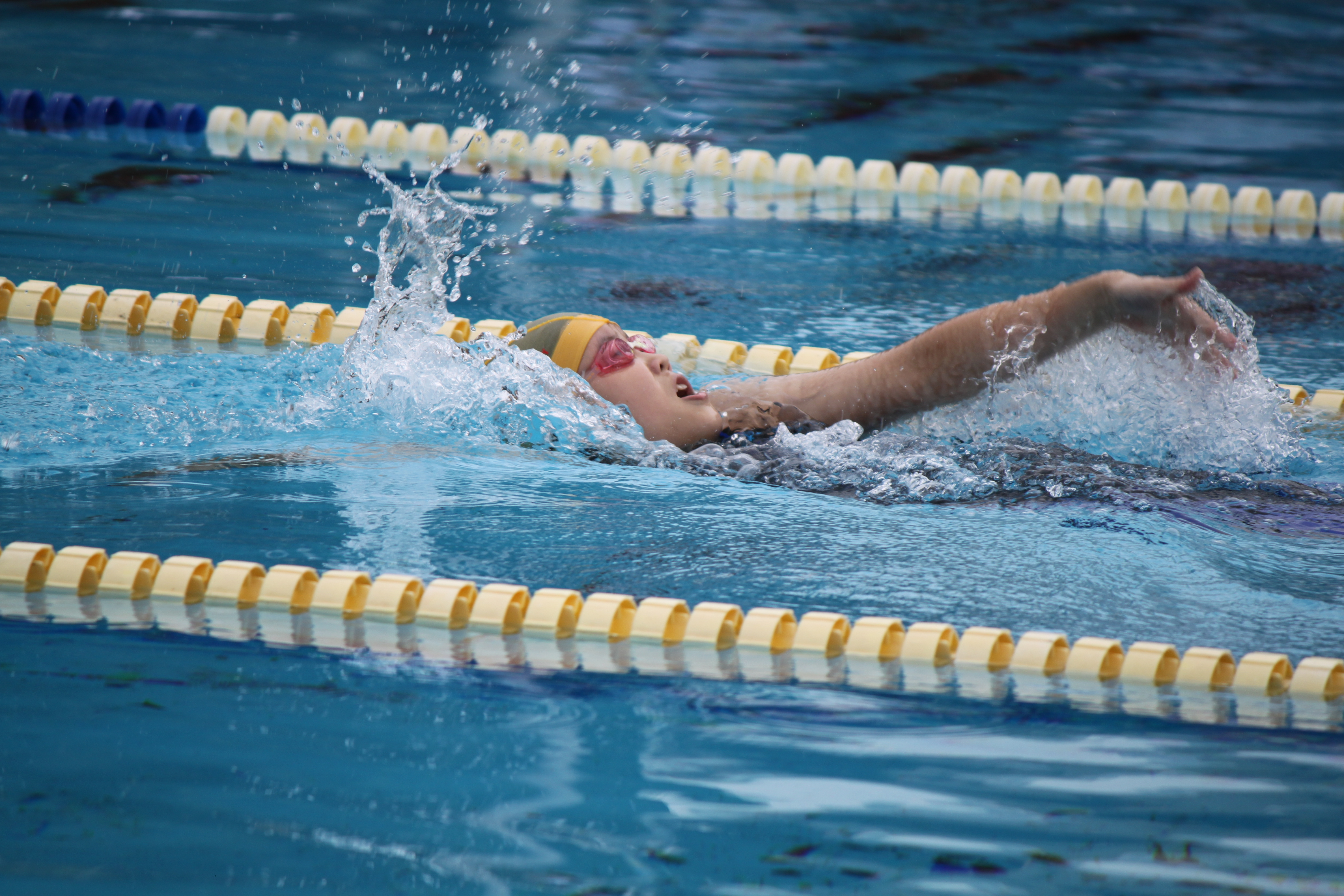 水泳競技 (5)