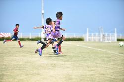mini_soccer (291)