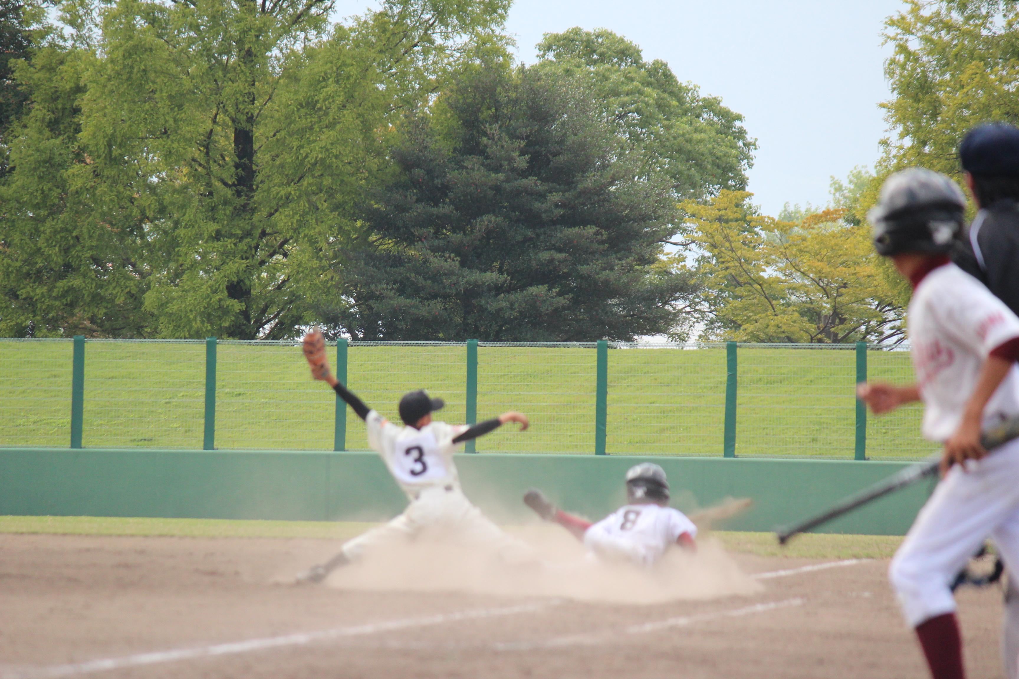 野球 (906)