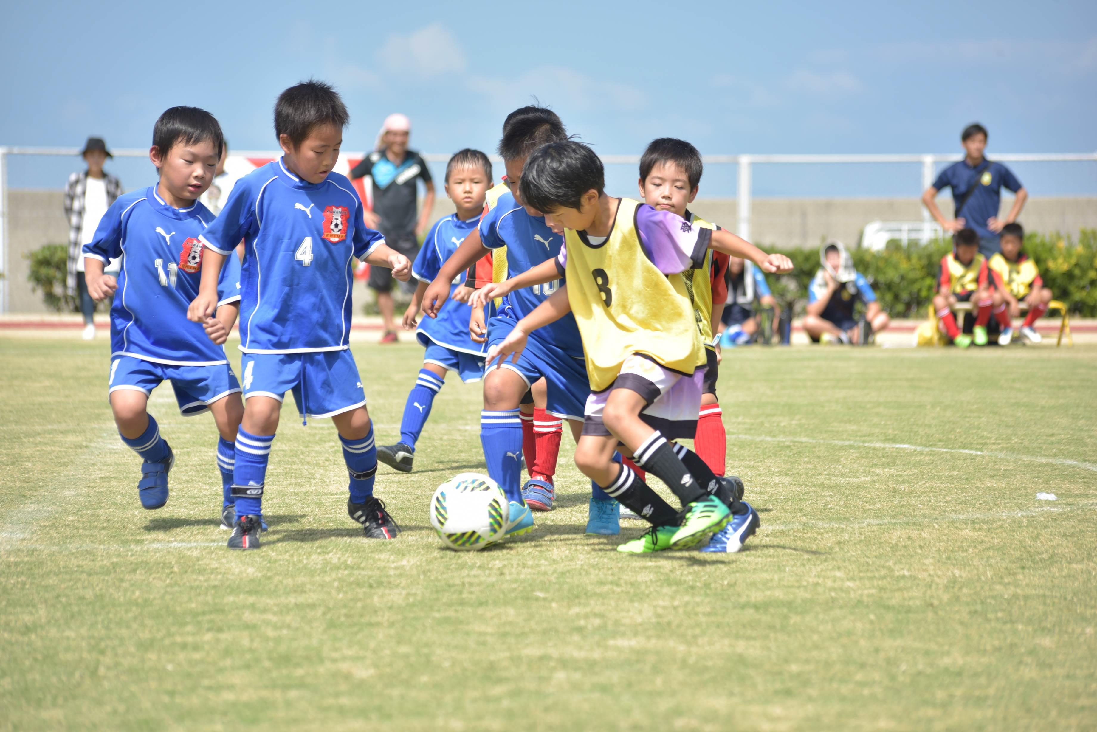 mini_soccer (621)