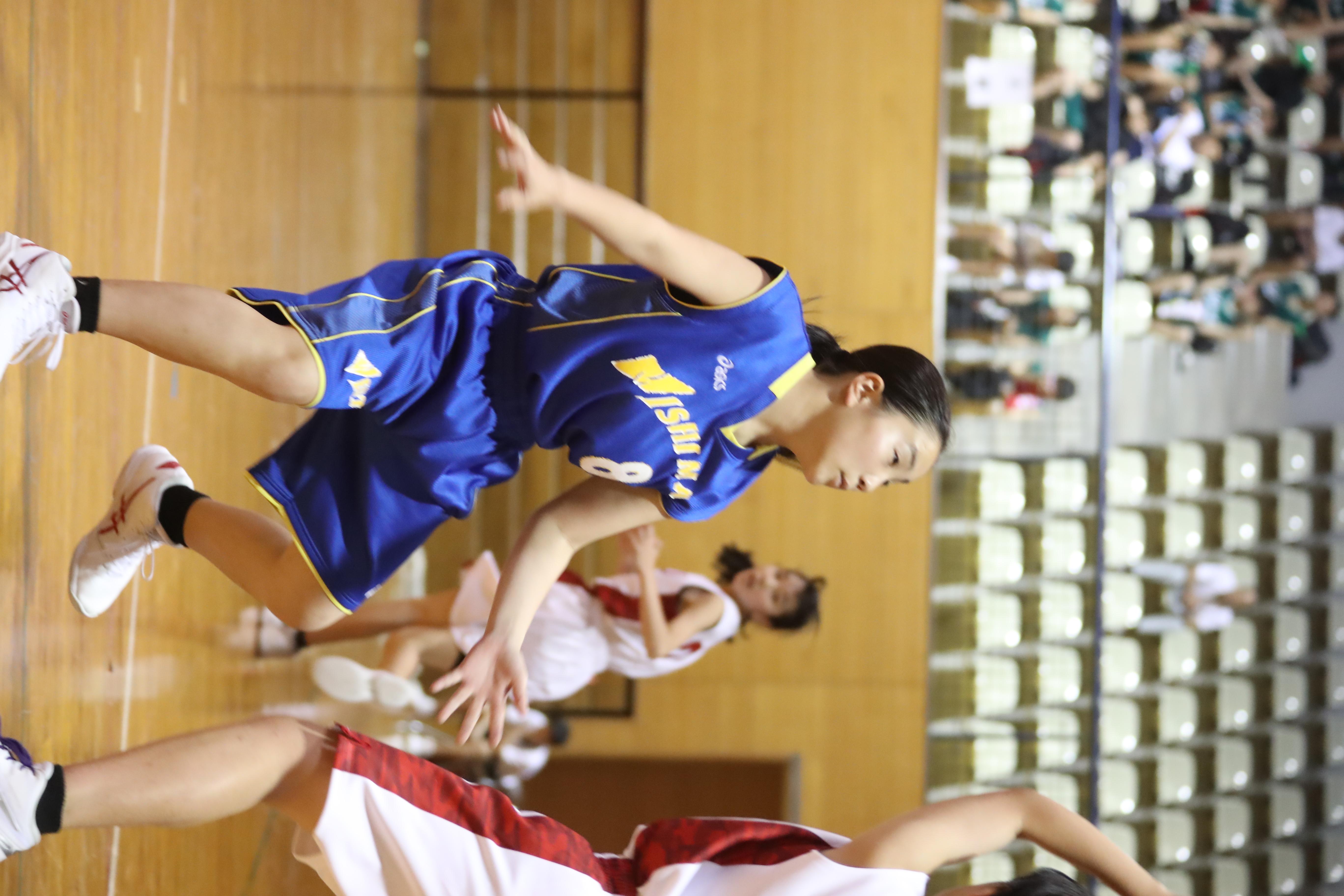バスケット (281)