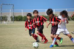 mini_soccer (111)