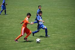 サッカー (446)