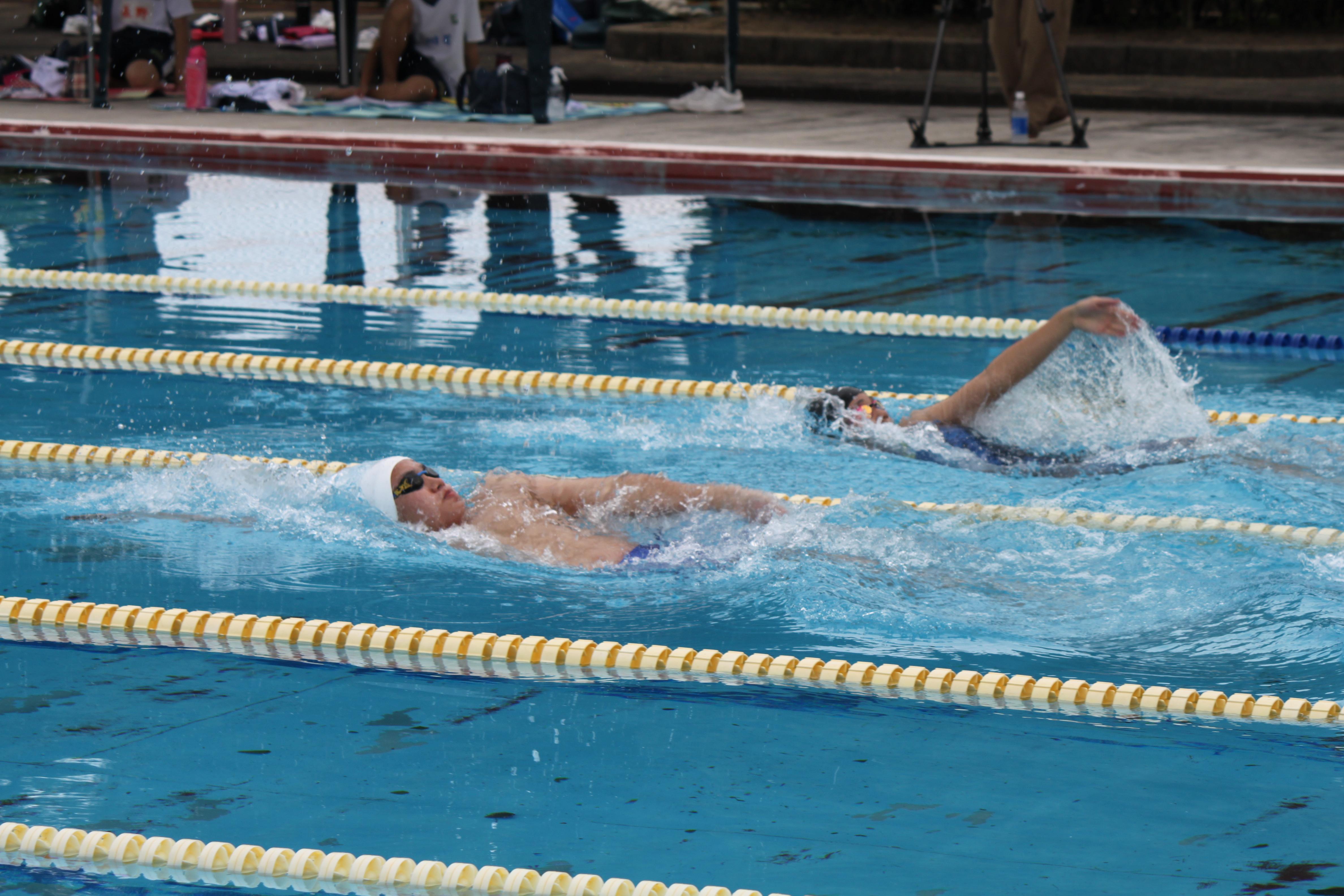 水泳競技 (10)