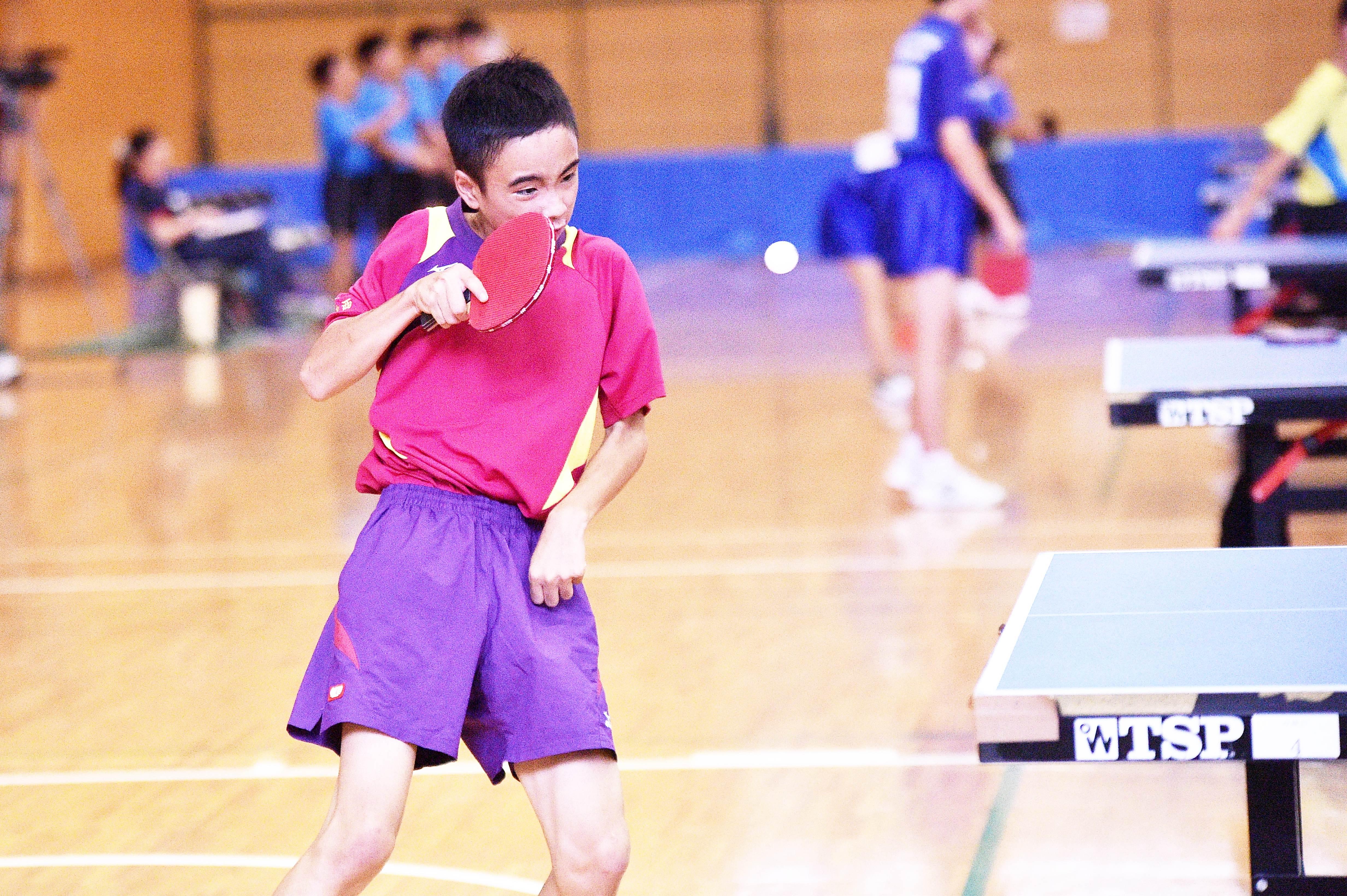 table_tennis (33)