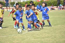 mini_soccer (624)