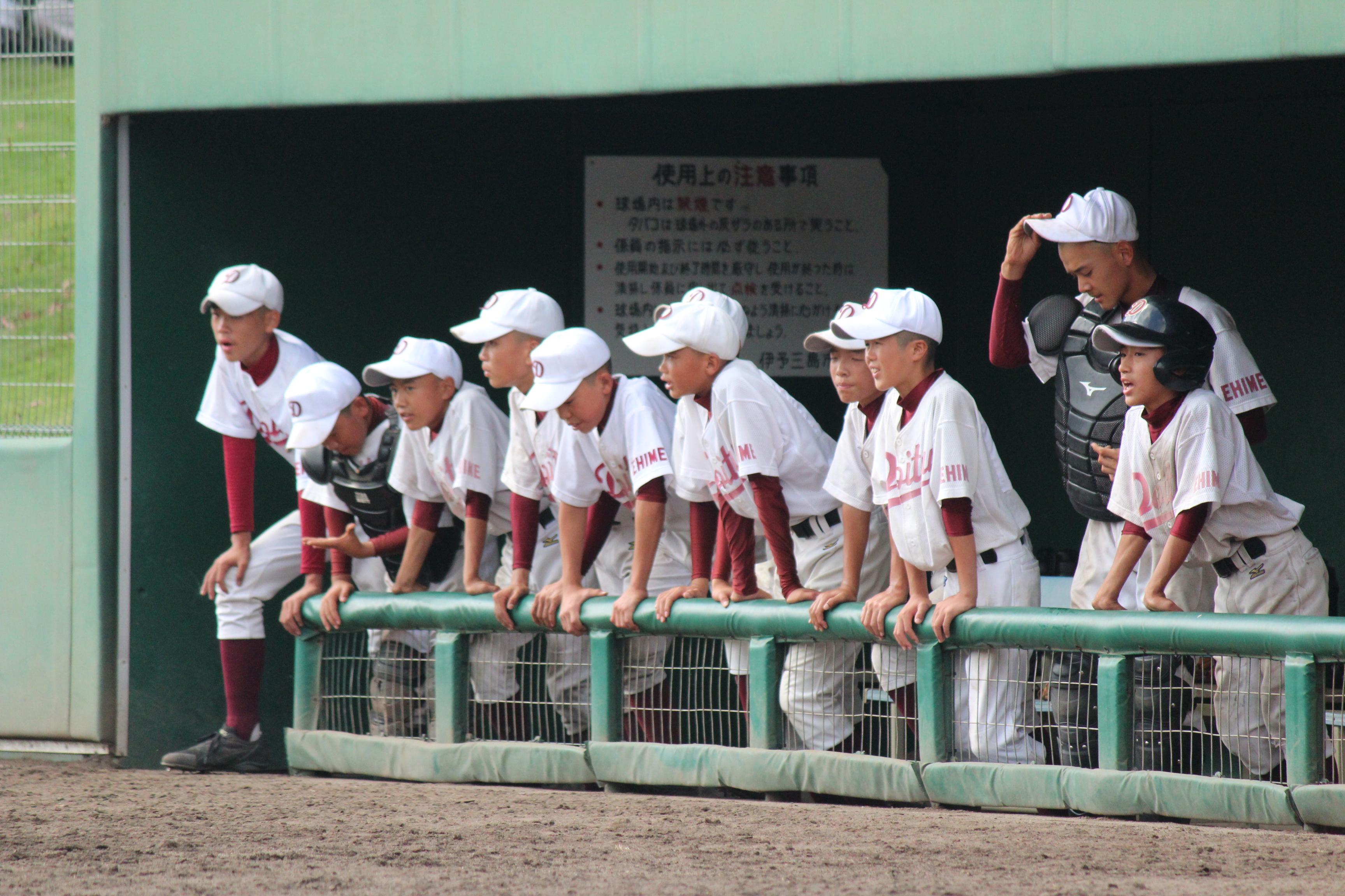 野球 (895)