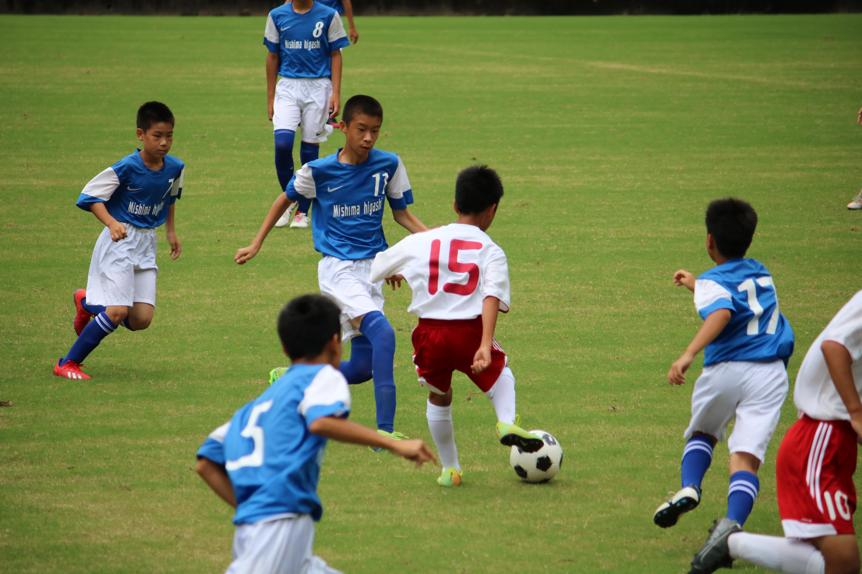 サッカー (242)