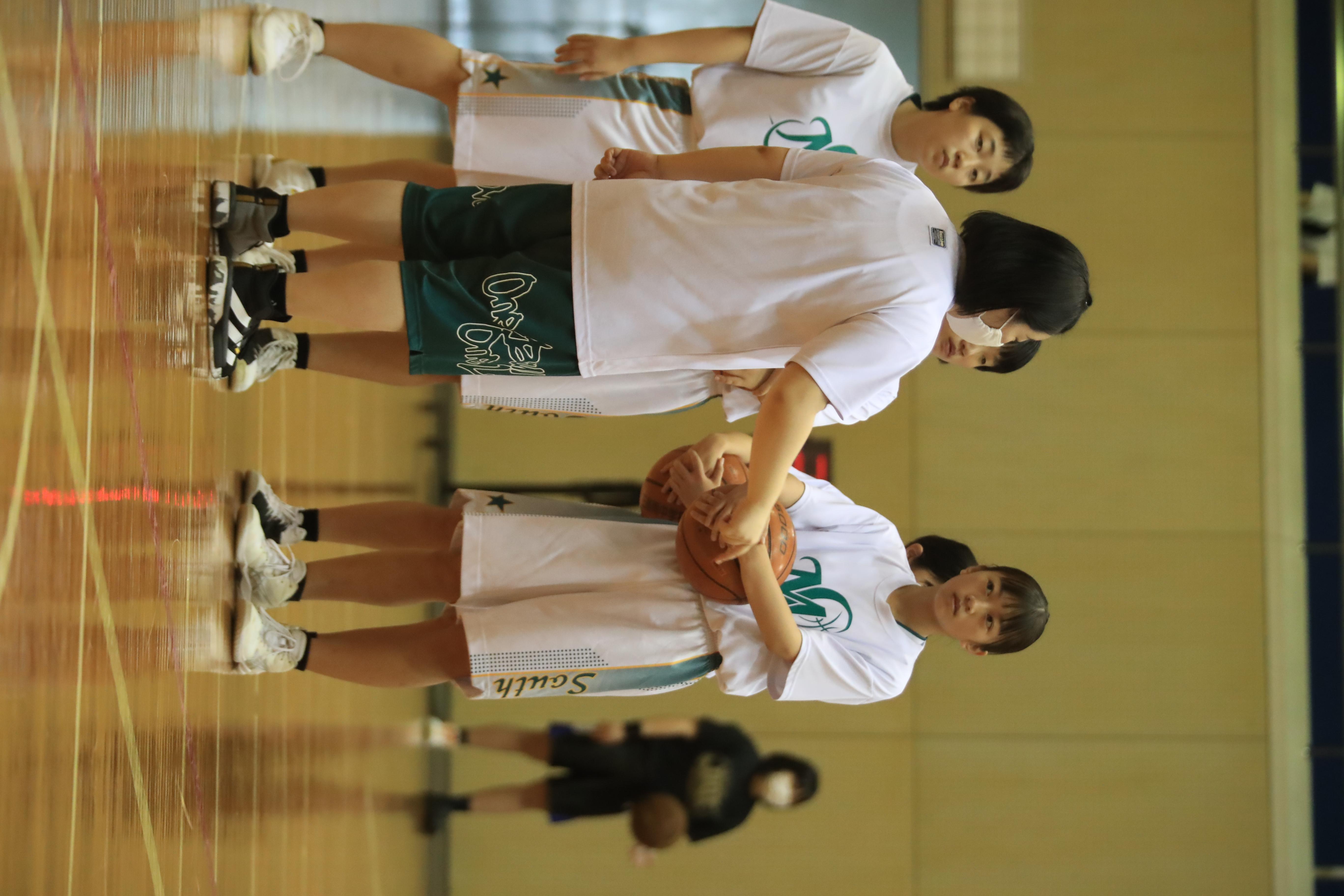 バスケット (1069)