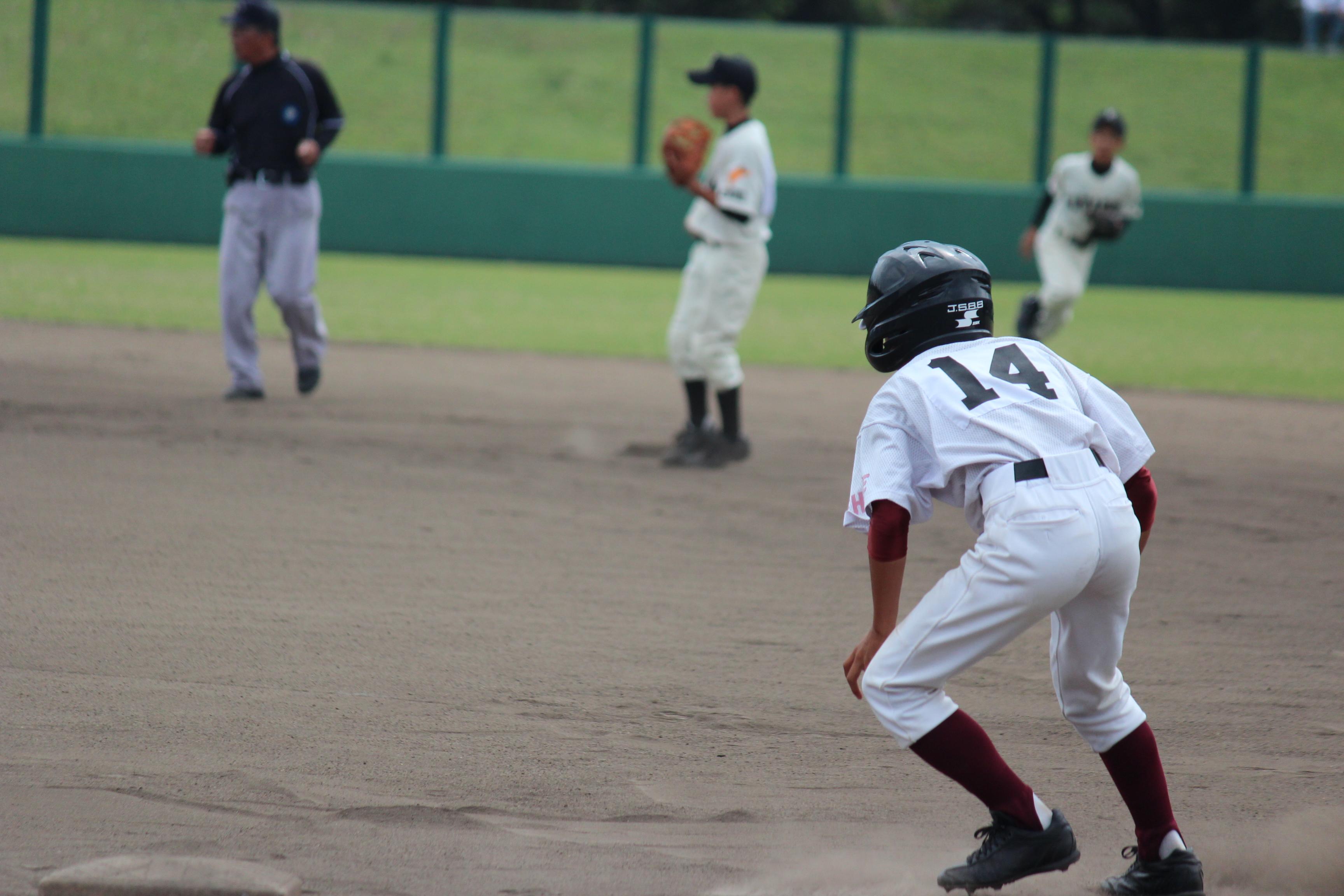 野球 (562)