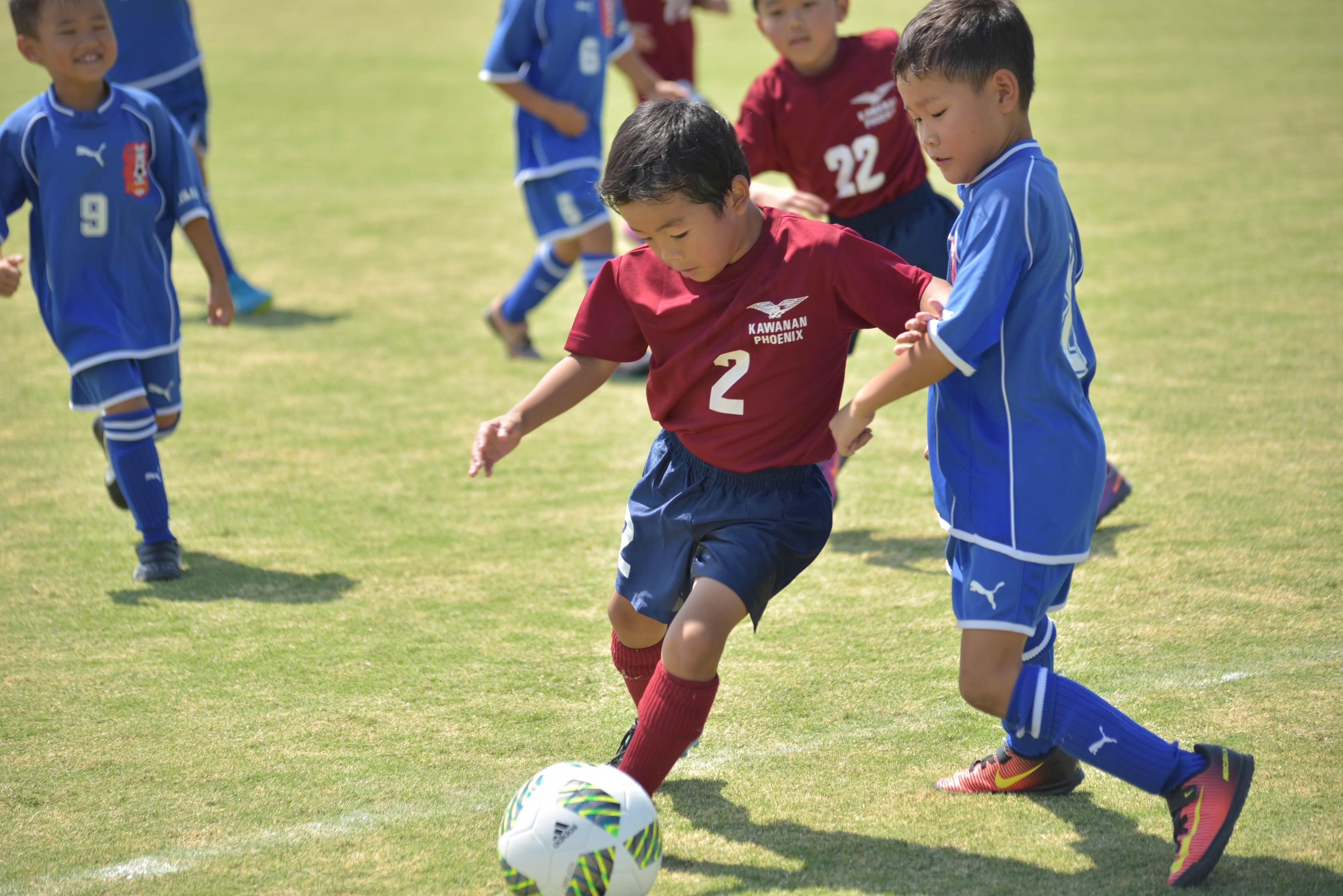 mini_soccer (681)