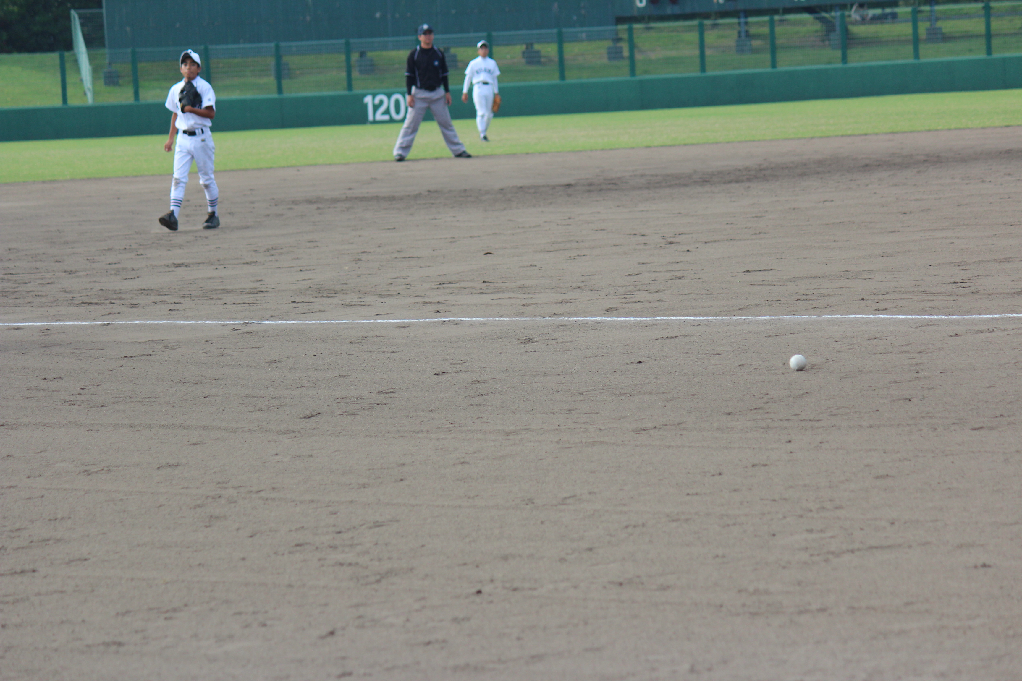 野球 (409)