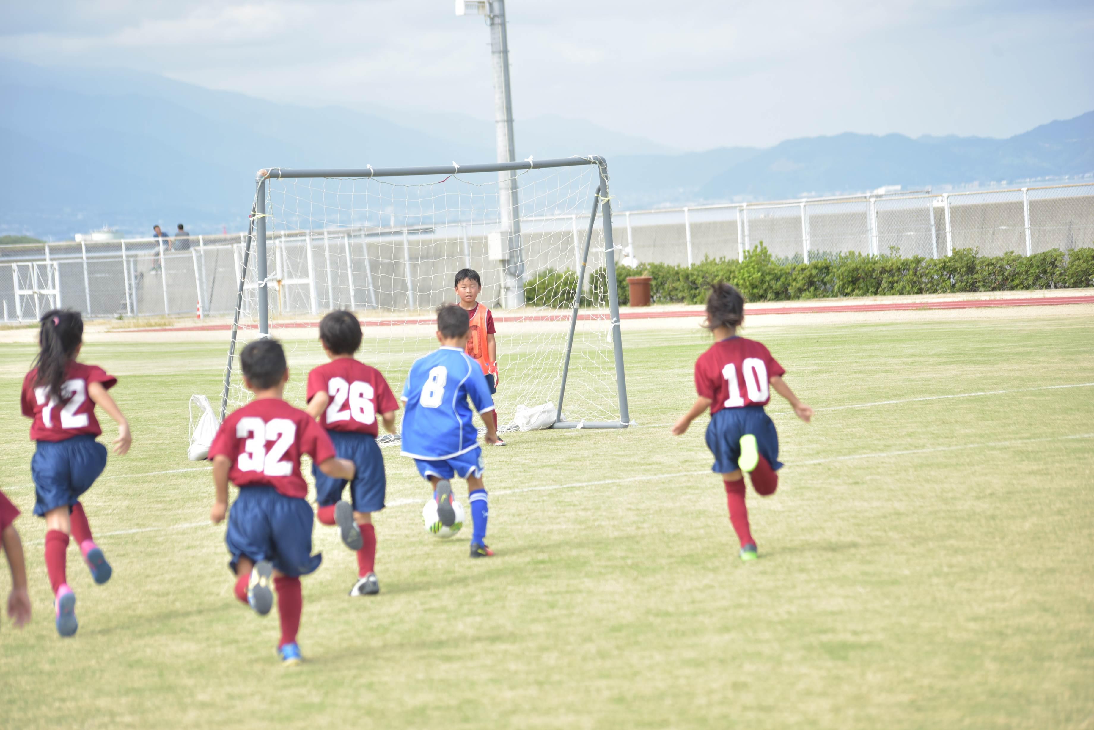 mini_soccer (560)