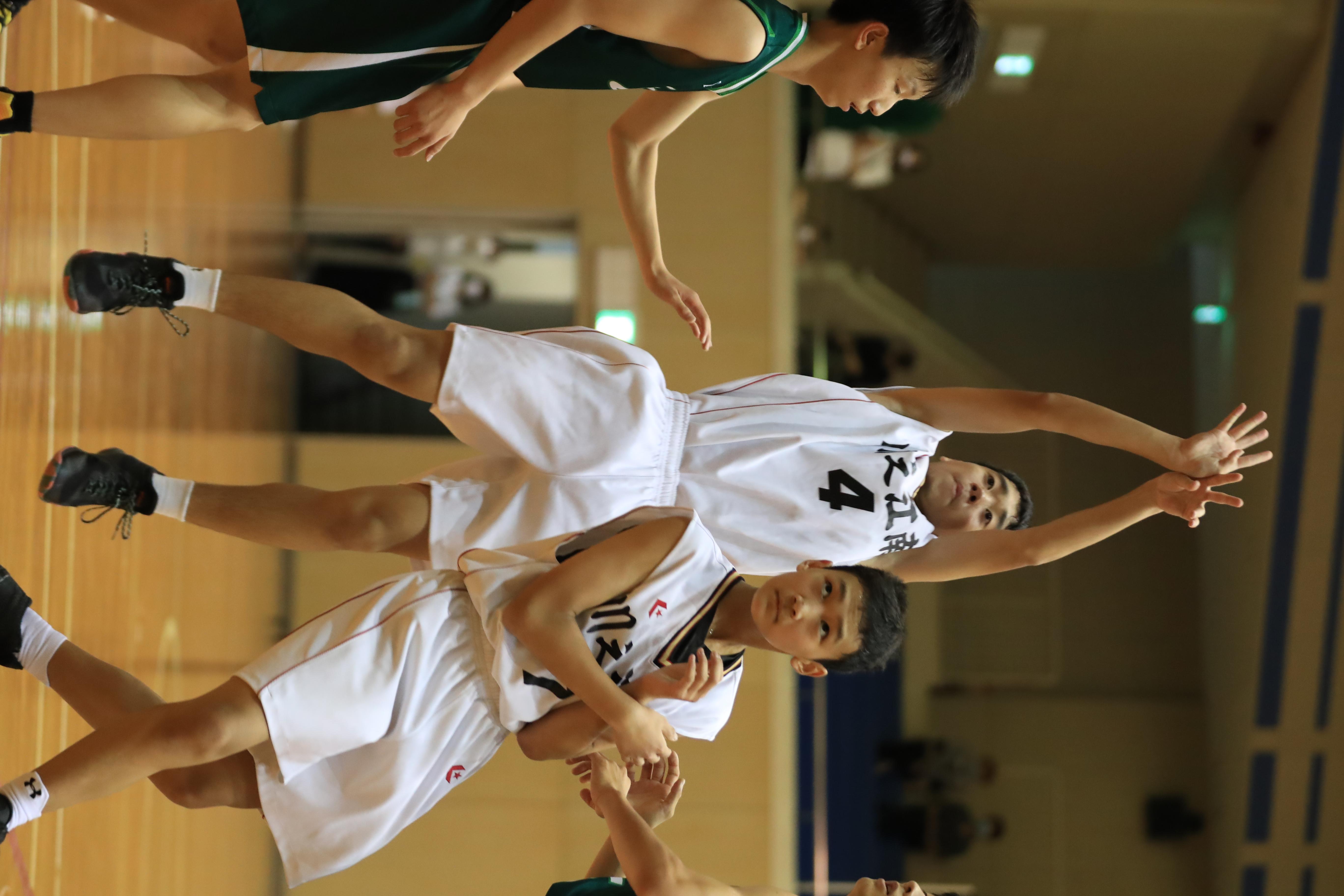 バスケット (210)