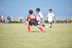 mini_soccer (336)