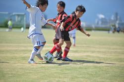 mini_soccer (386)