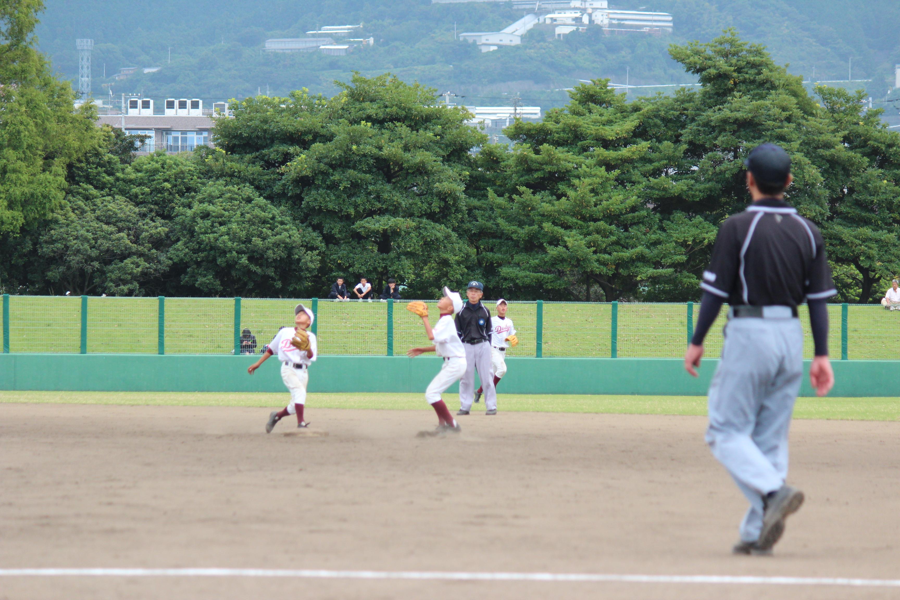 野球 (311)
