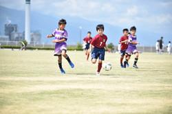 mini_soccer (251)