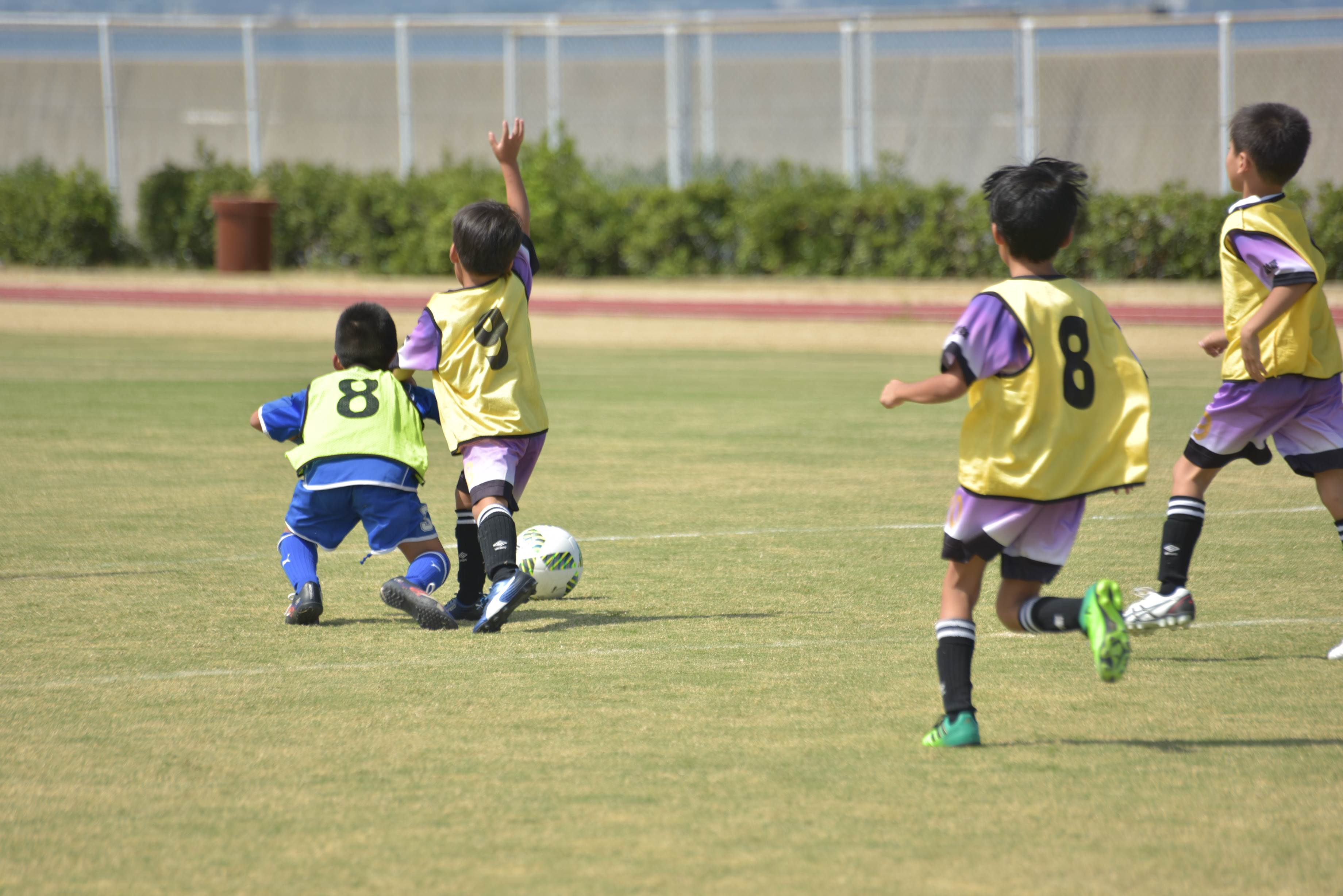 mini_soccer (615)