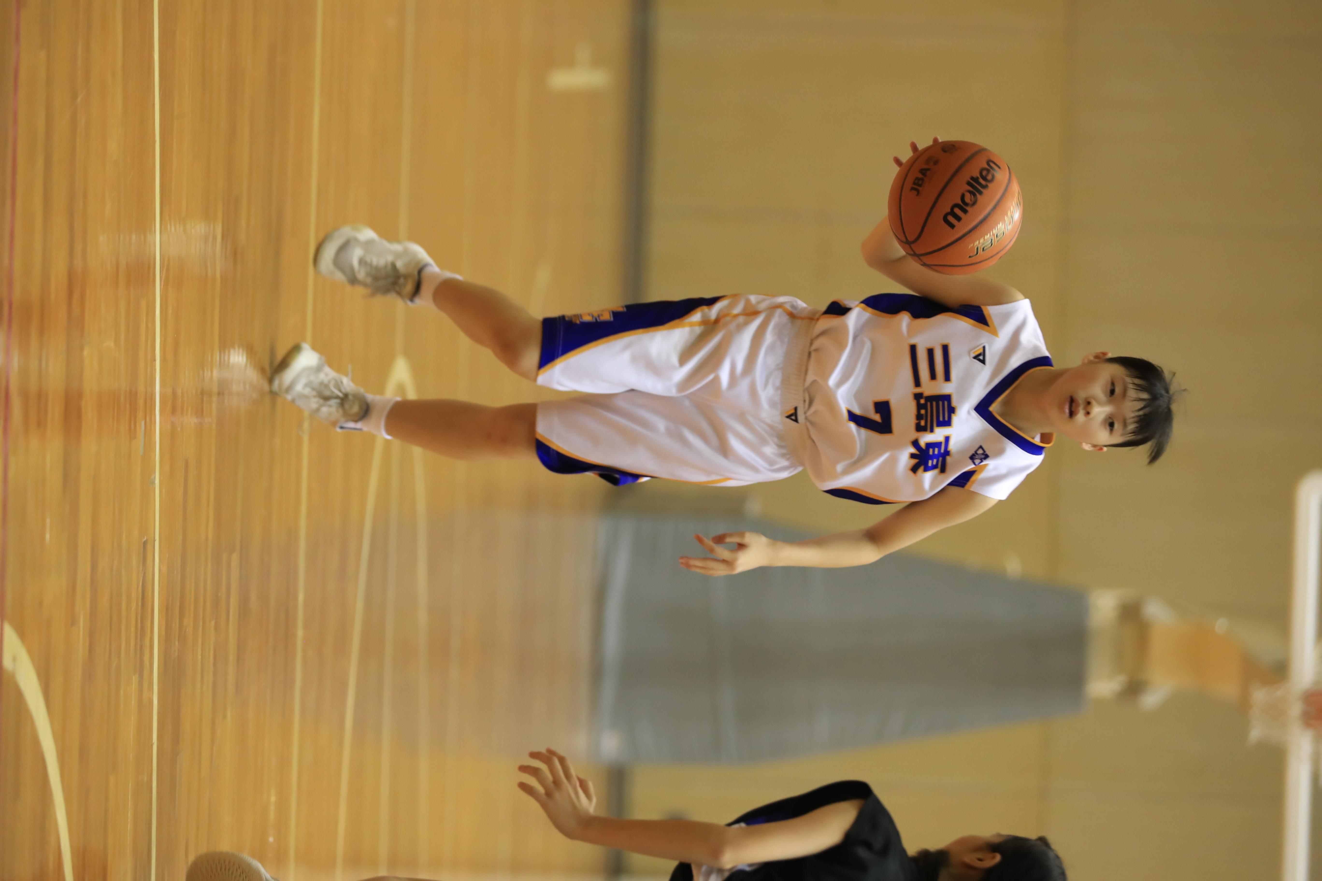 バスケット (804)