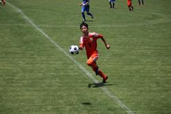 サッカー (392)