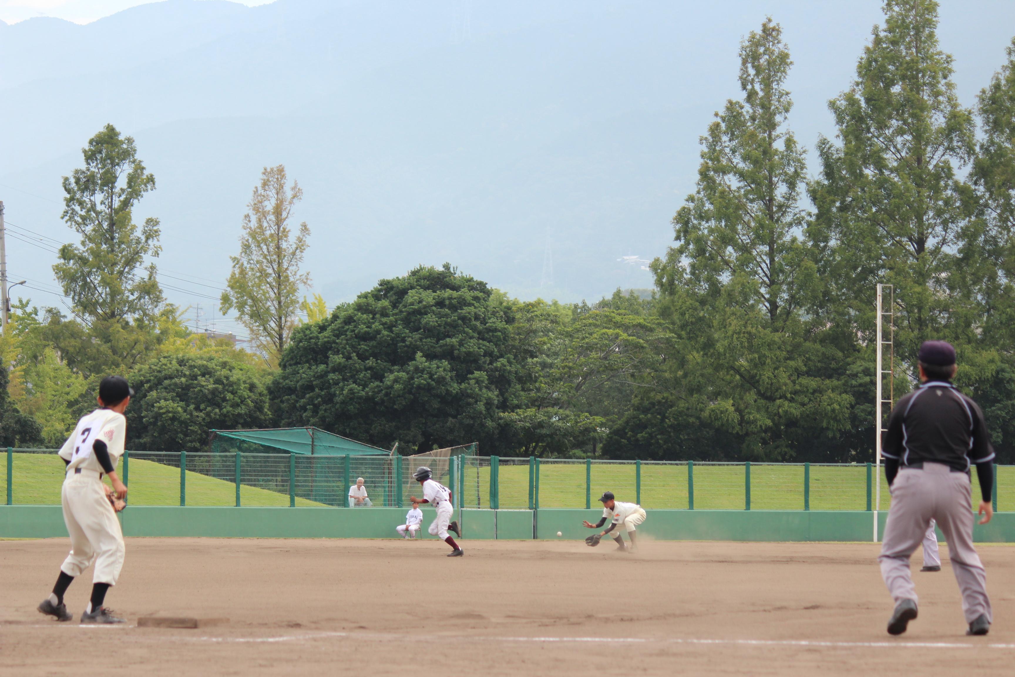 野球 (567)