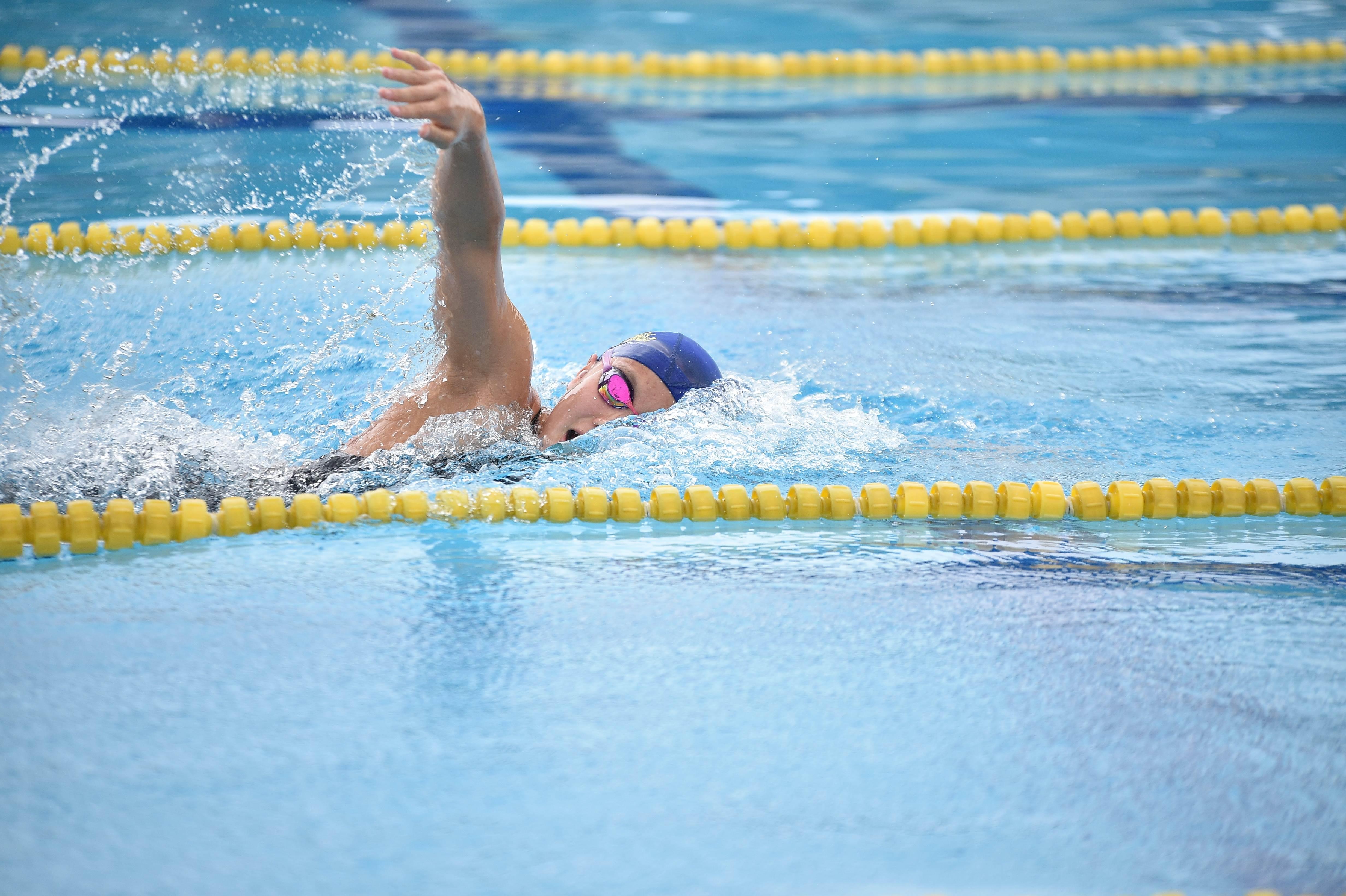 水泳 (94)