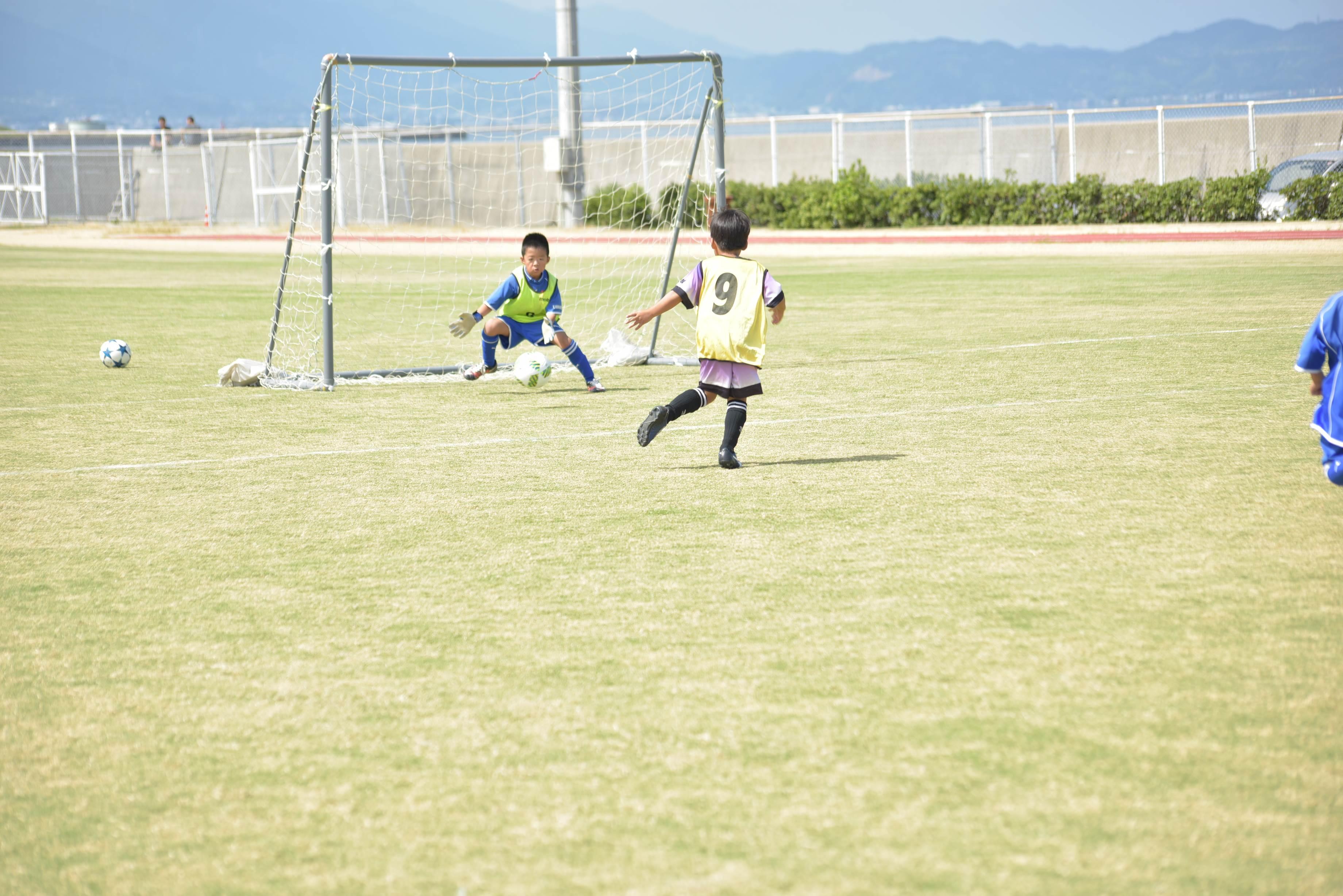 mini_soccer (602)
