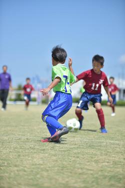 mini_soccer (429)