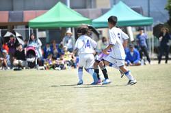mini_soccer (526)
