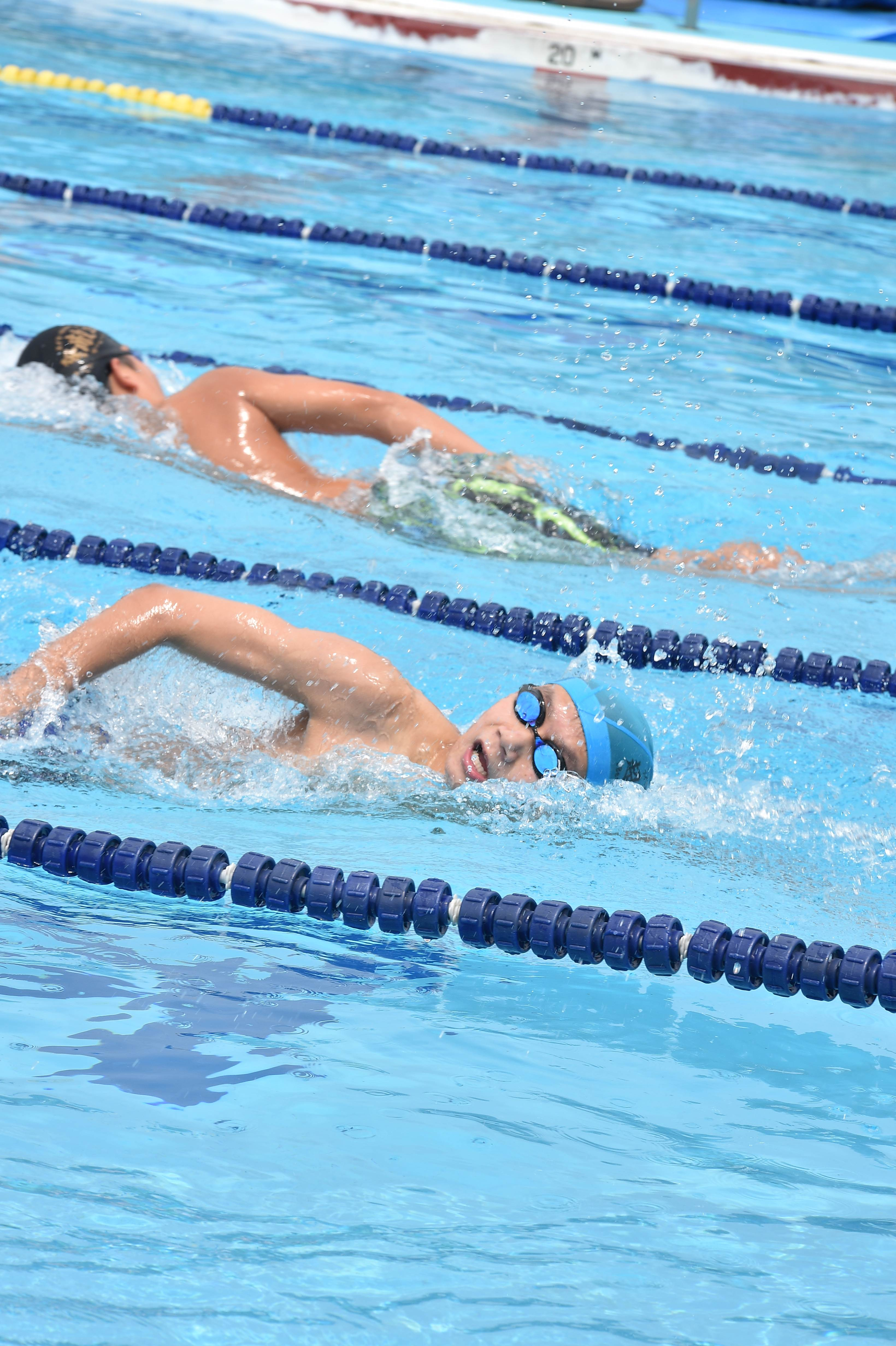 水泳 (19)