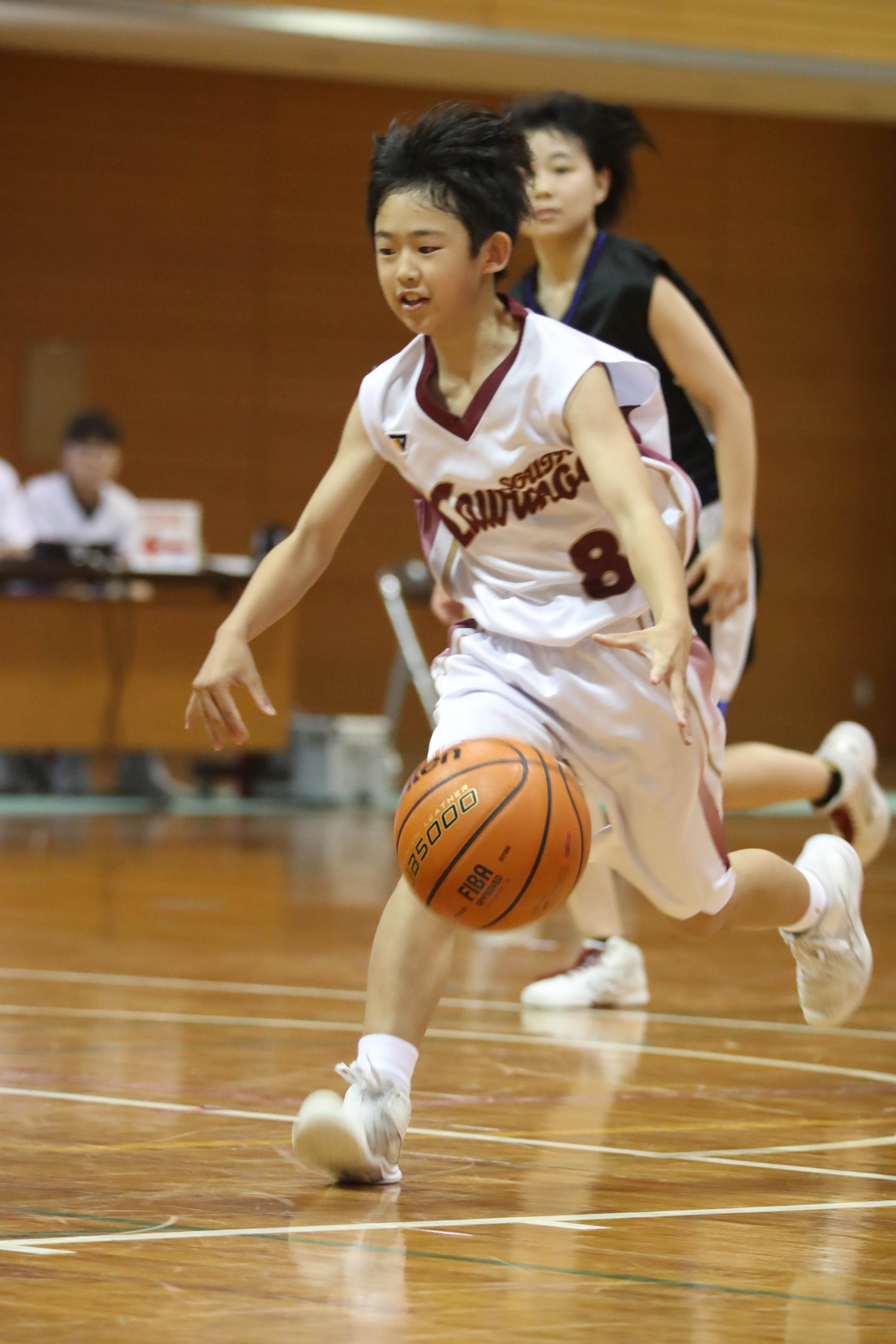バスケット (66)