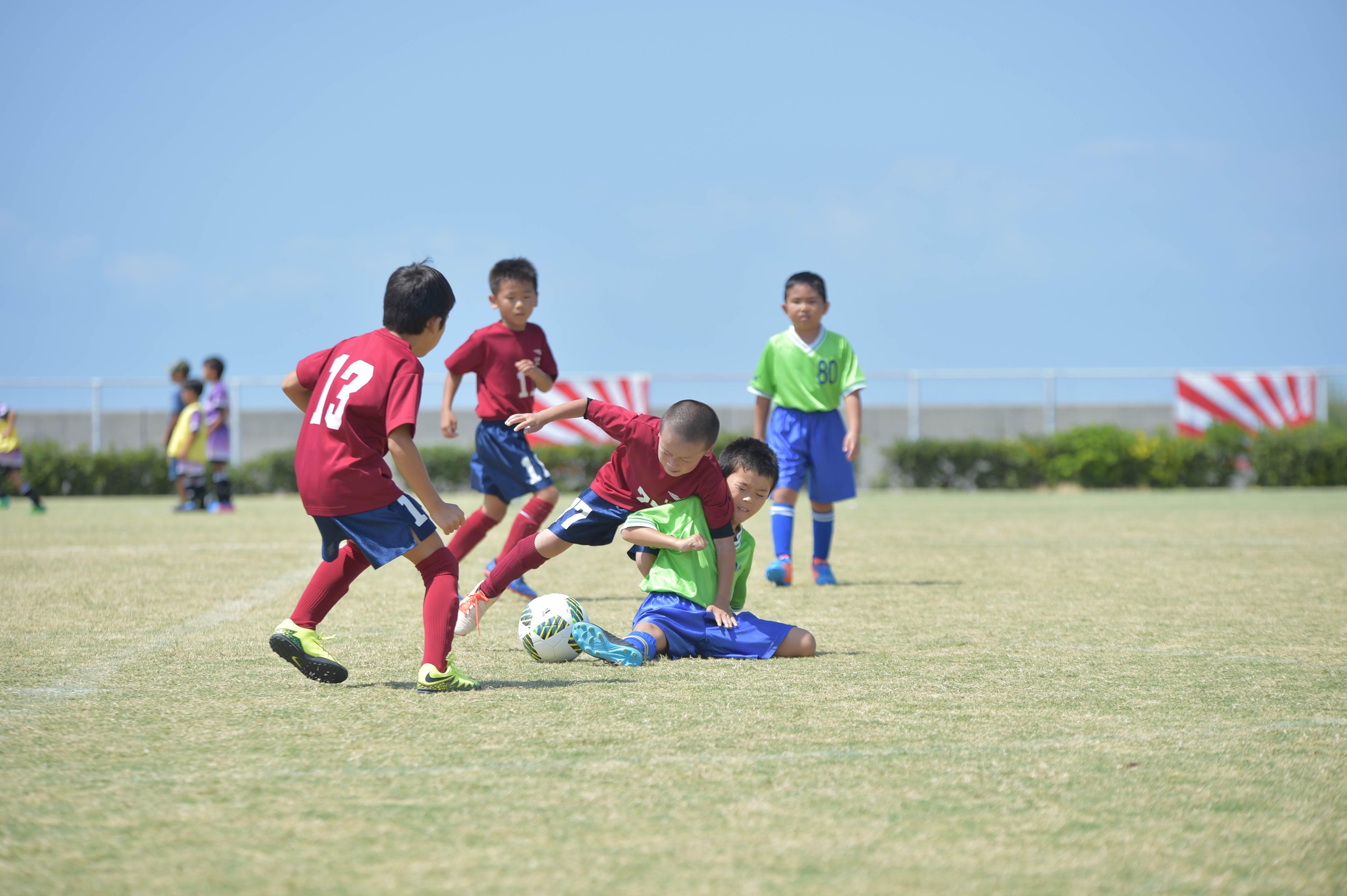 mini_soccer (455)