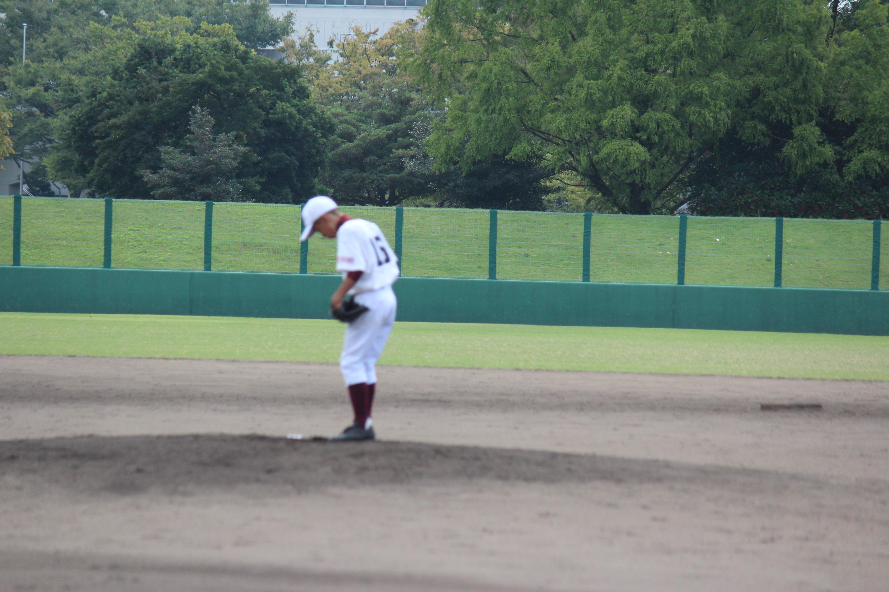 野球 (871)