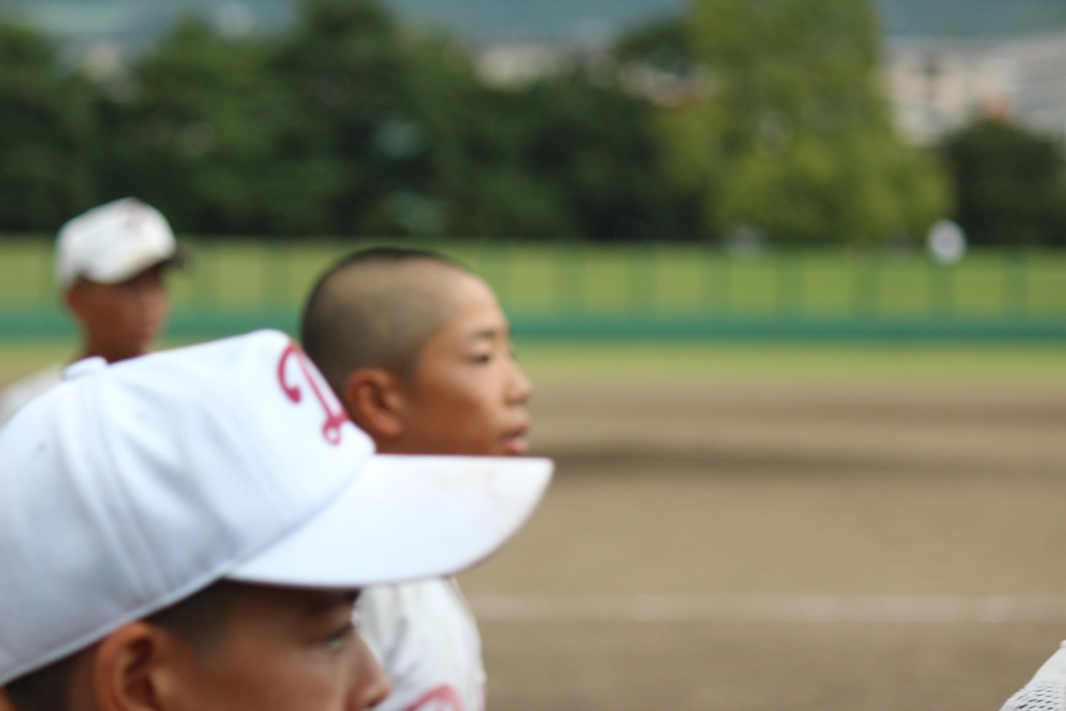 野球 (956)