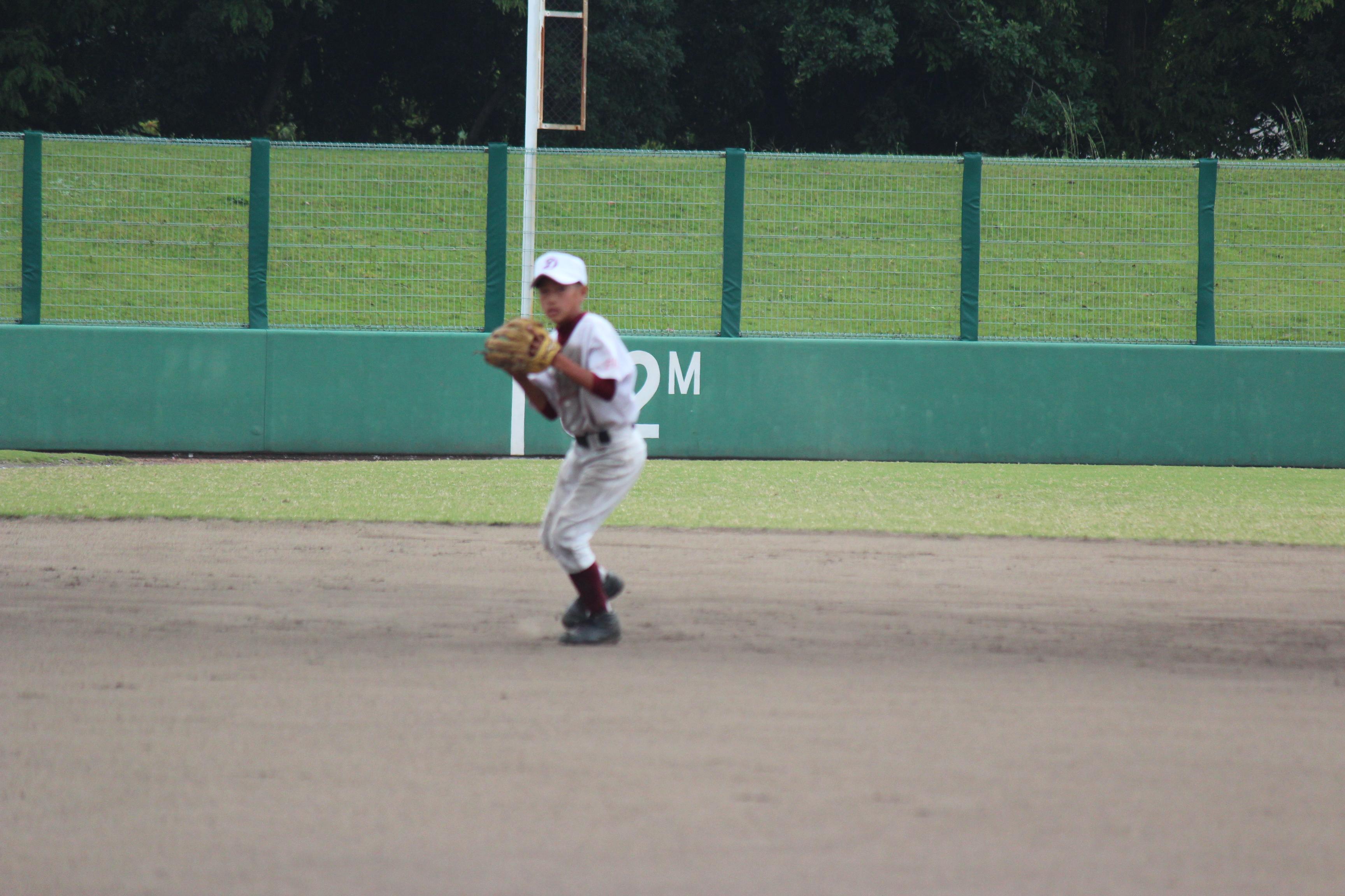 野球 (586)